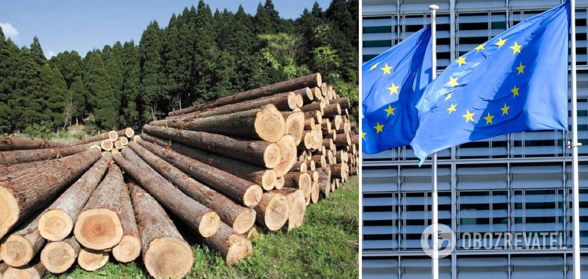 Украина отменит мораторий на экспорт леса-кругляка в обмен на 600 млн евро от Евросоюза, – журналист