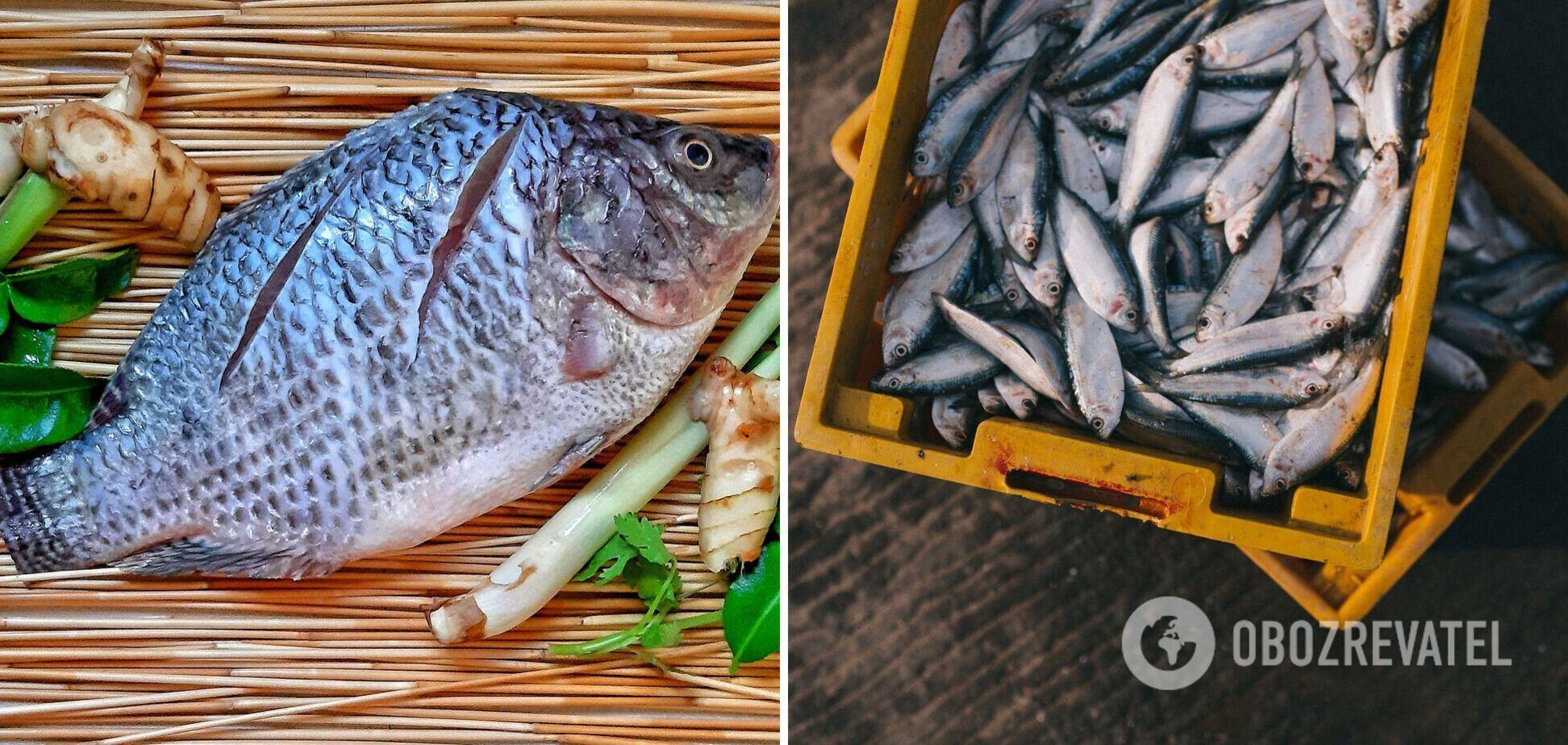 Названа самая полезная рыбу, которую нужно обязательно есть всем