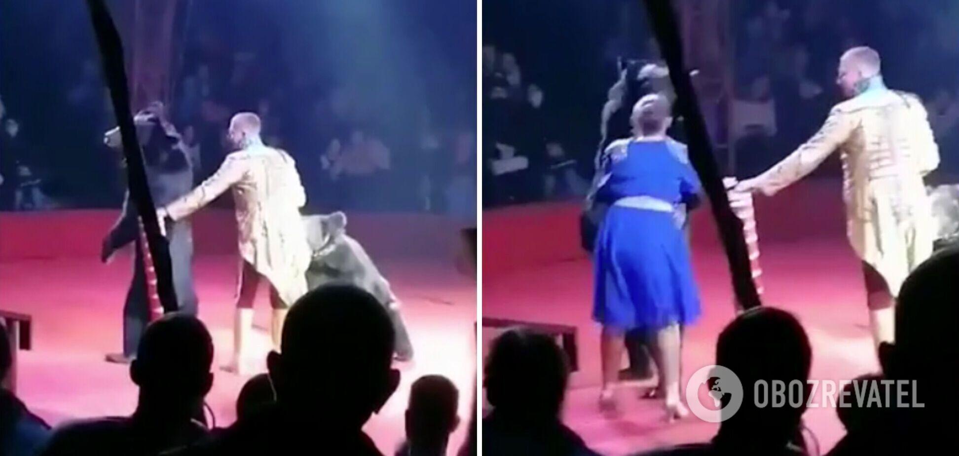 Напад тварини в цирку