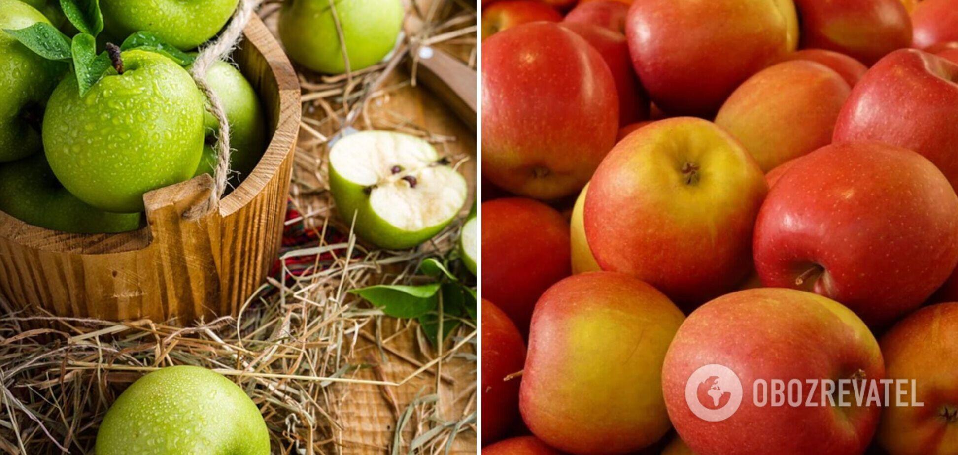 Как правильно выбрать и хранить яблоки всю зиму: полезные советы