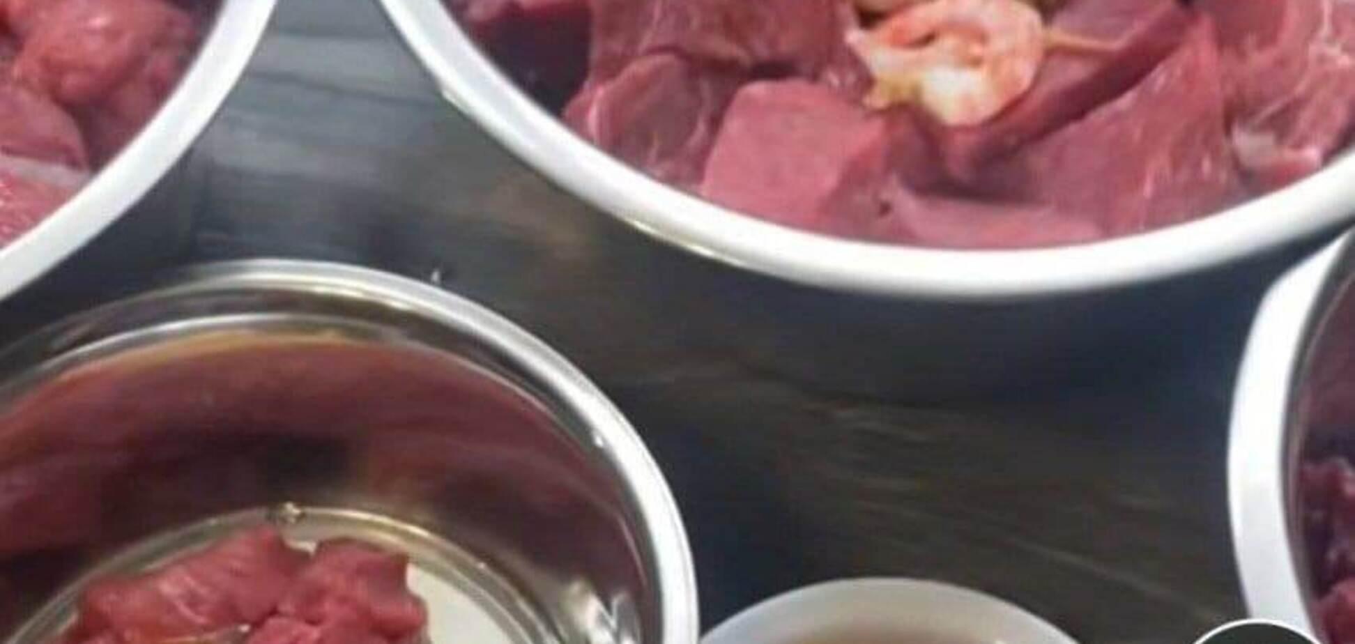 У Росії розкритикували блогерку, яка годувала собак м'ясом