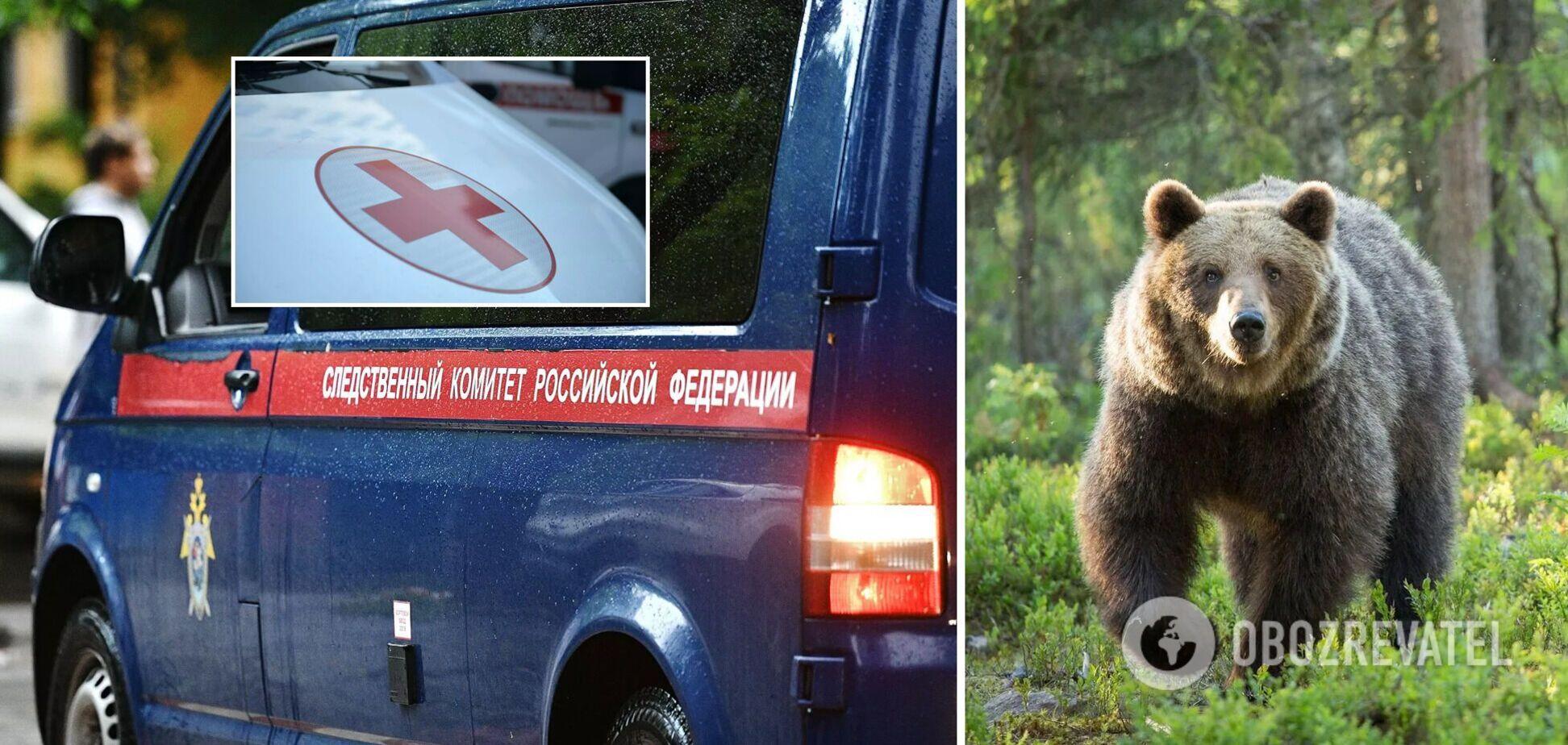В России медведь напал в лесу на людей, которые возвращались с рыбалки: есть погибший