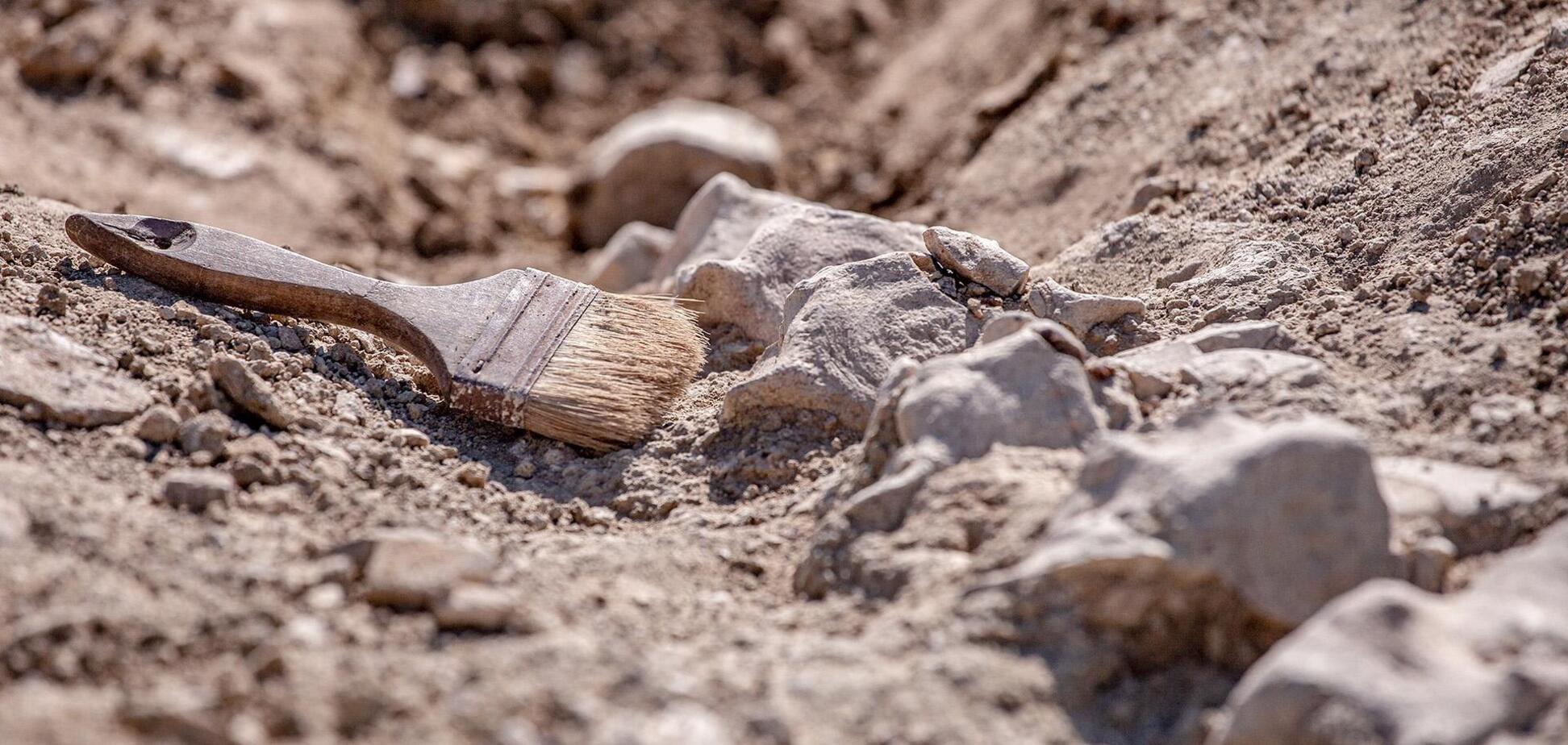 Археологи обнаружили поселения времен позднего палеолита