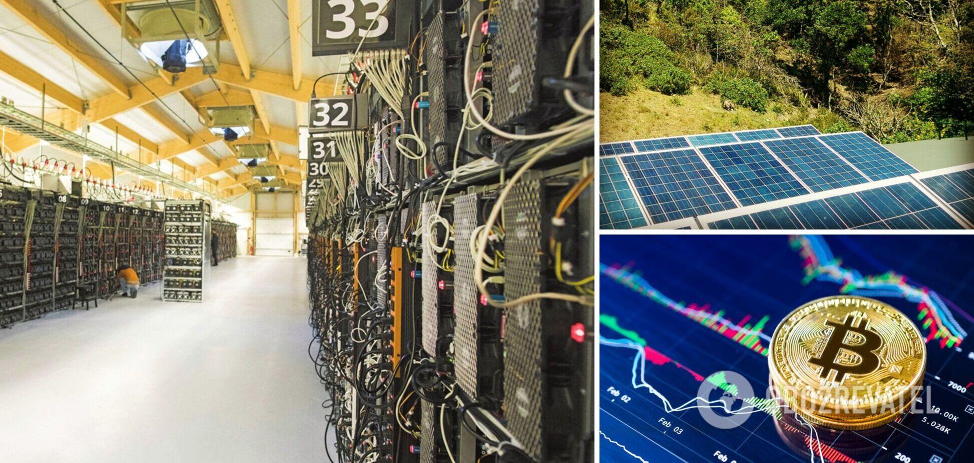 'Зеленую' криптоферму запустят в Байрон-Бей