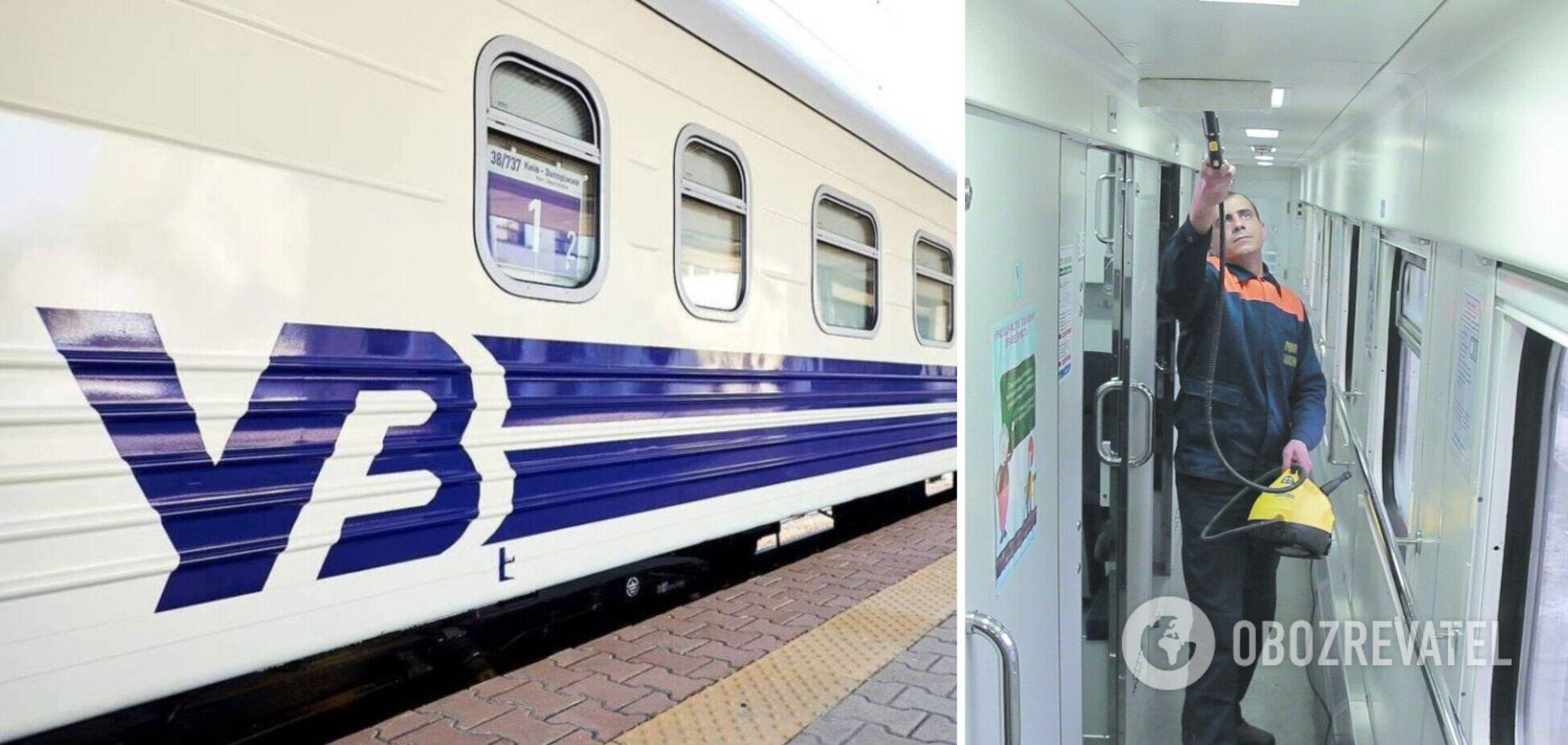 Поїздом 'Укрзалізниці' бігають таргани