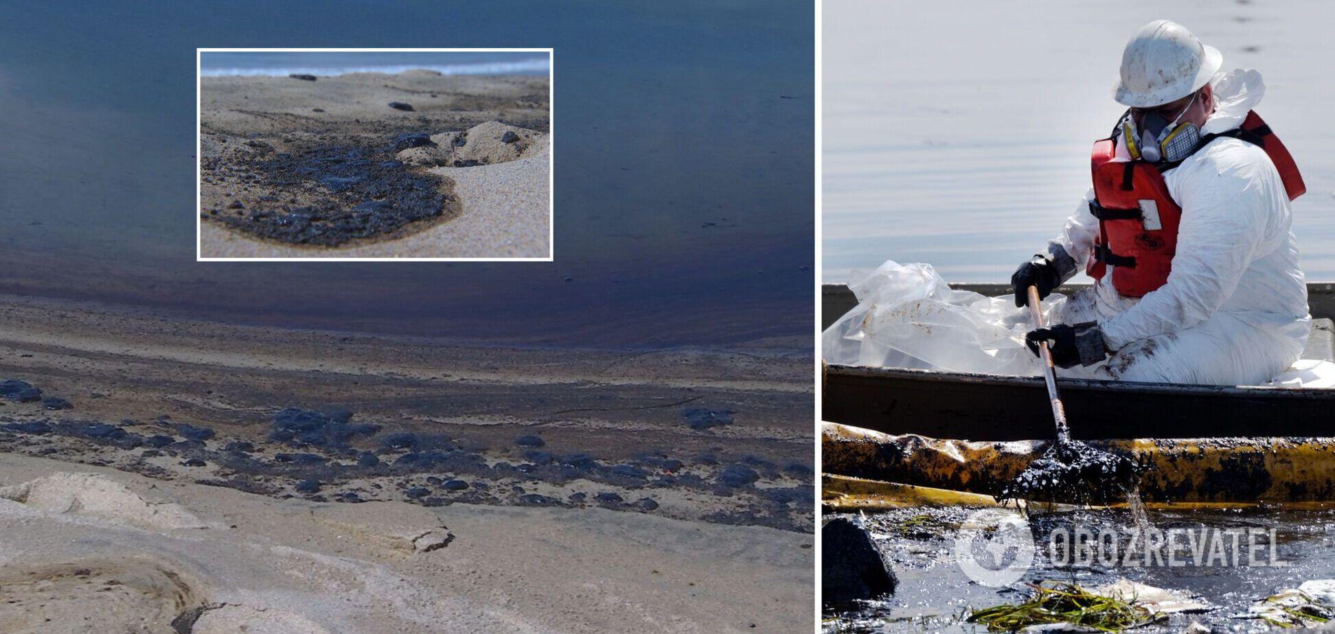 Біля узбережжя Каліфорнії трапився масштабний розлив нафти: загинули риба й птахи. Відео