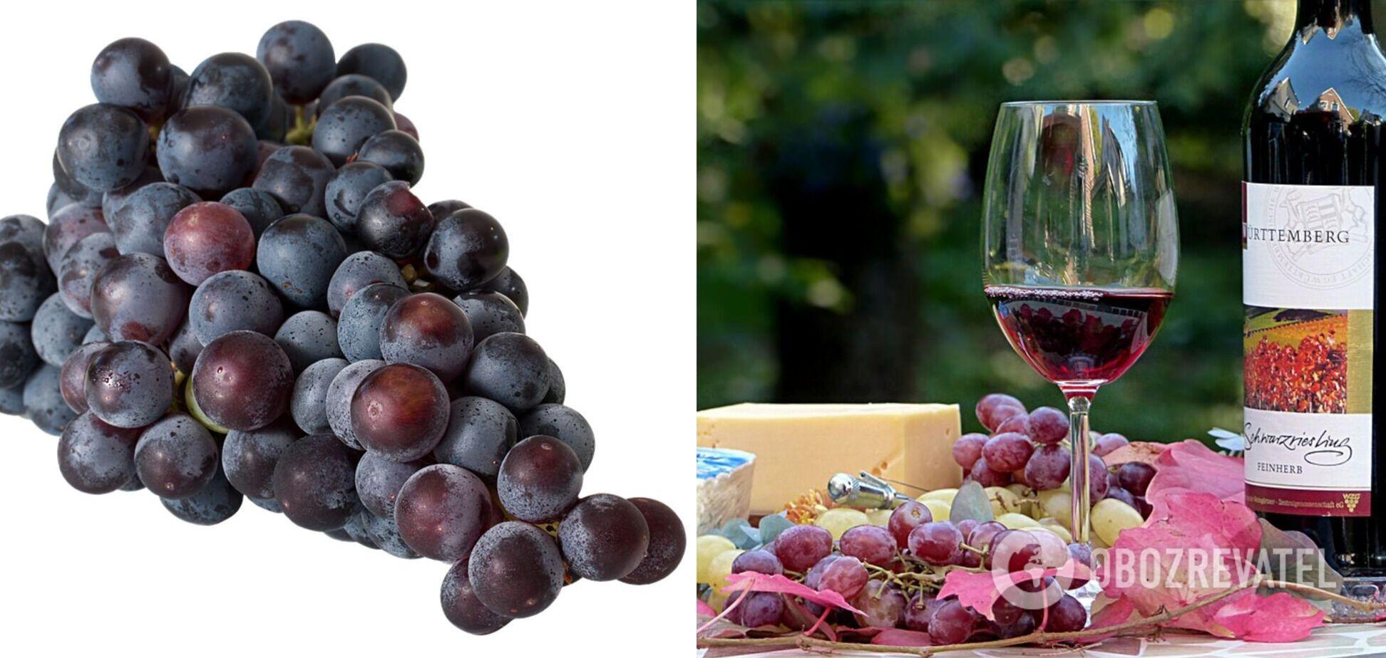 Домашнє вино: експерт розповів, як не перебити смак винограду в напої