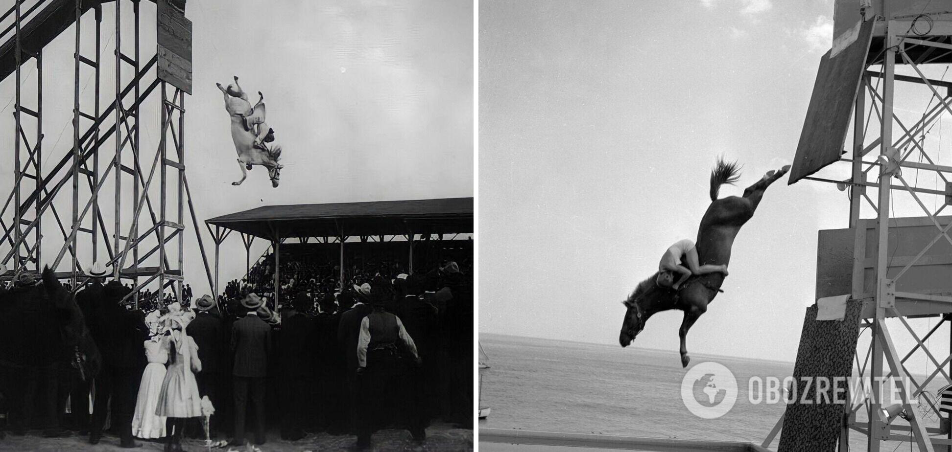 Автором идеи нырять на коне был американец Уильям Карвер