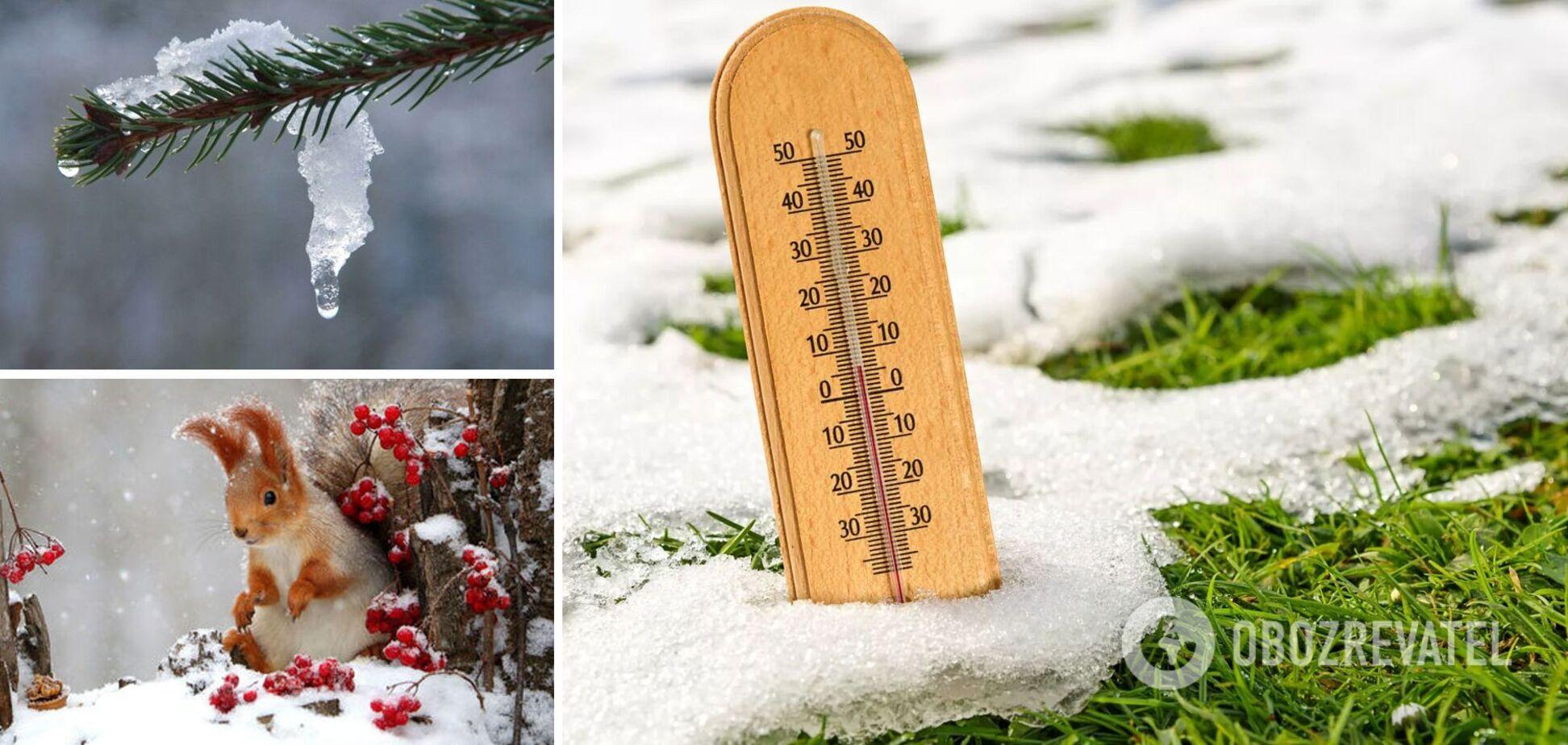 В Україну йде різке потепління, але весна буде пізньою: прогноз синоптиків