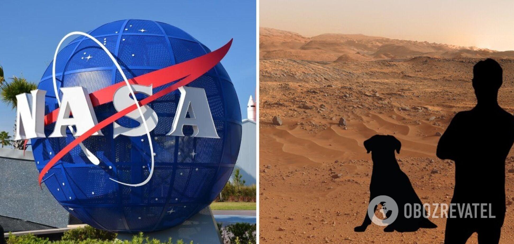 NASA создало возможность сделать фото на Марсе всем желающим