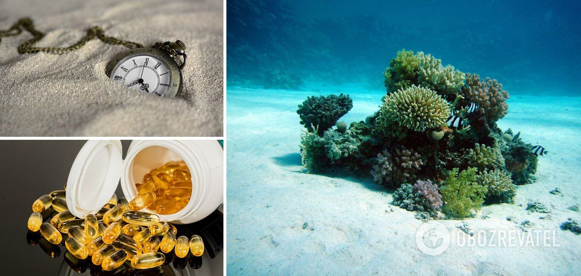 Корали, антикваріат та деякі пігулки
