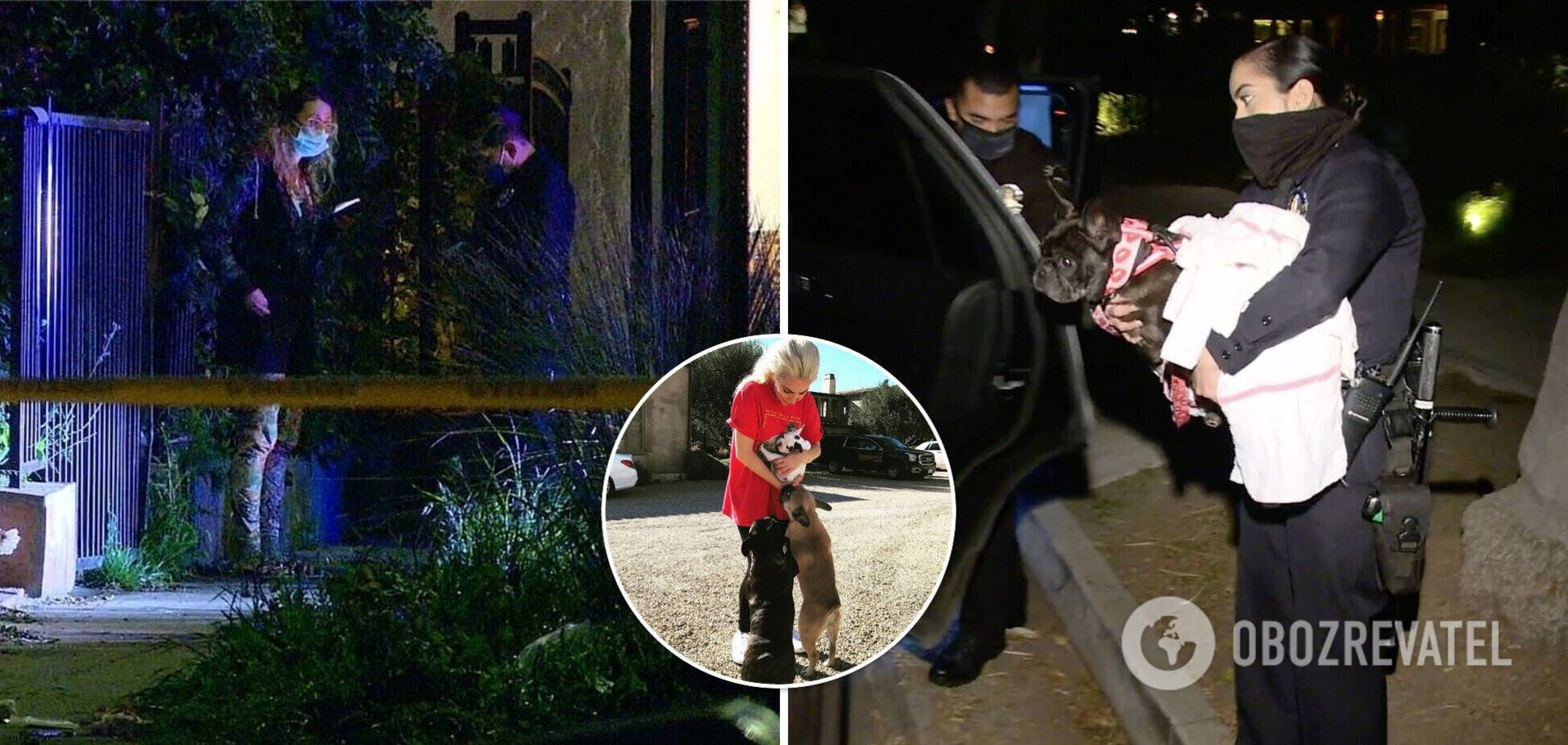 Вигульника собак Леді Гаги обстріляли: тварин вкрали. Фото та відео