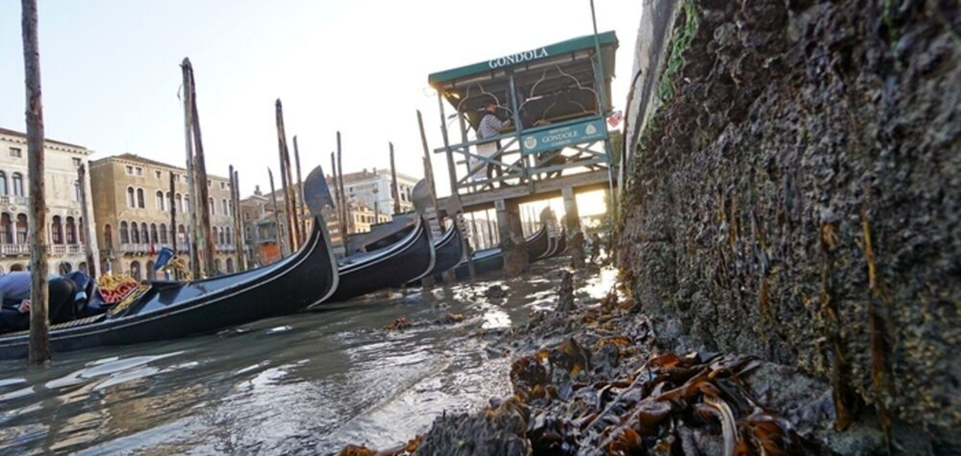 В Венеции пересохли знаменитые каналы, улицы опустели. Видео