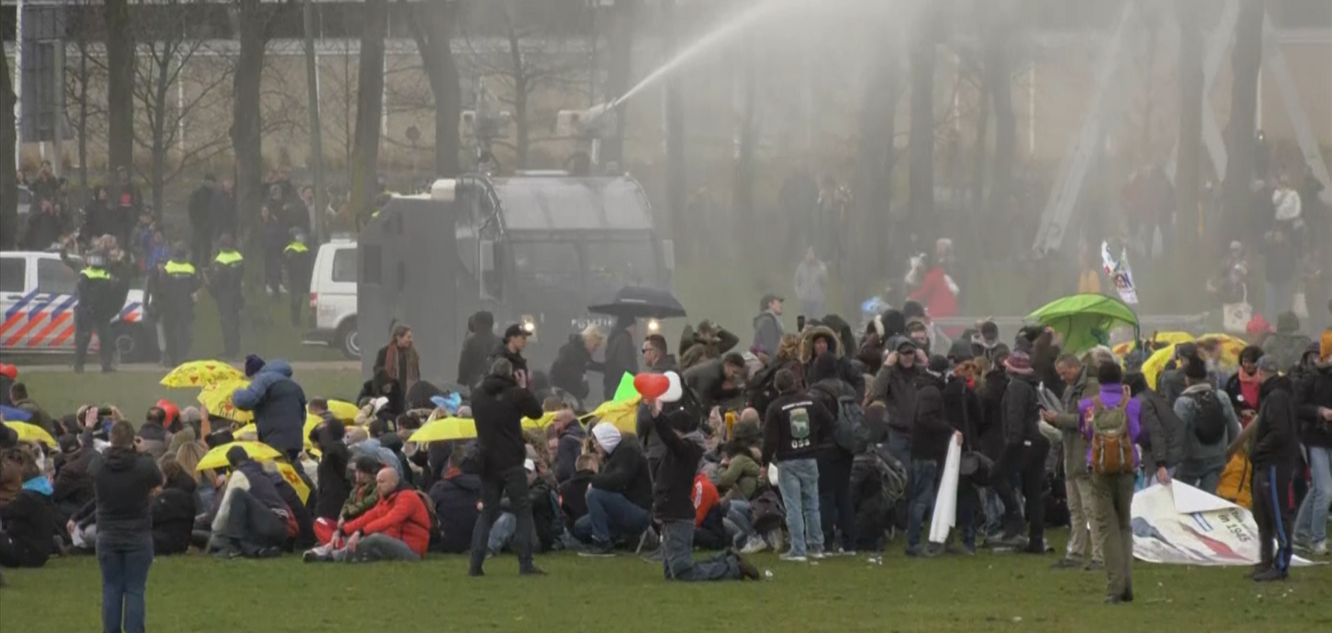 Поліція Гааги застосувала водомети під час розгону демонстрантів