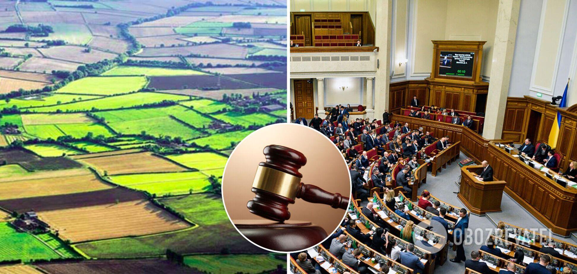 В Україні продаватимуть земельні ділянки на аукціонах: Рада встановила правила