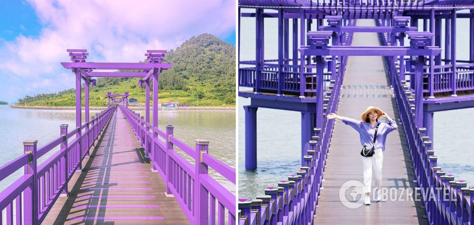 У Південній Кореї два острови розфарбували в пурпурний колір: як вони виглядають