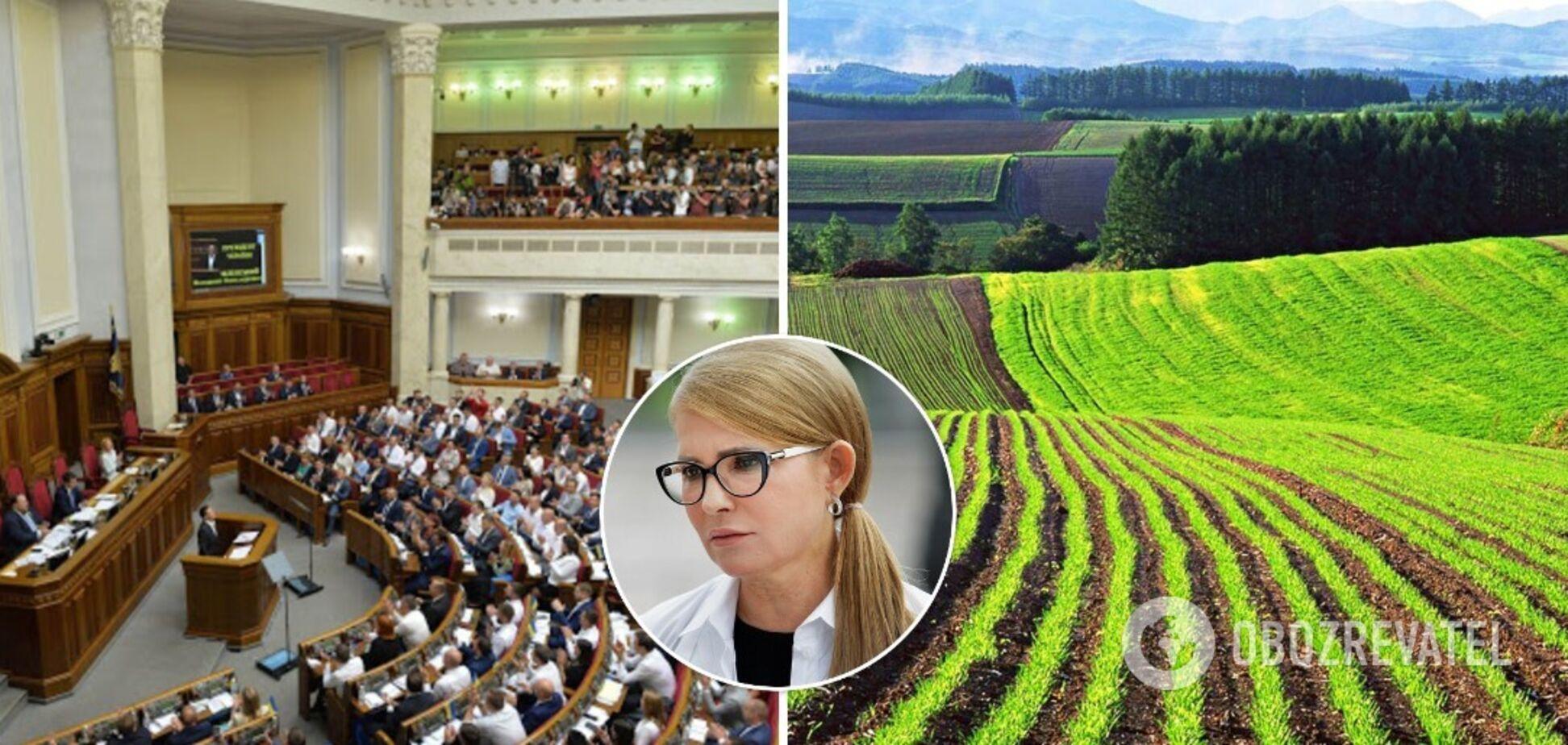 В ухваленні земельних законів необхідно дослухатися до порад 'Батьківщини', вважає експерт