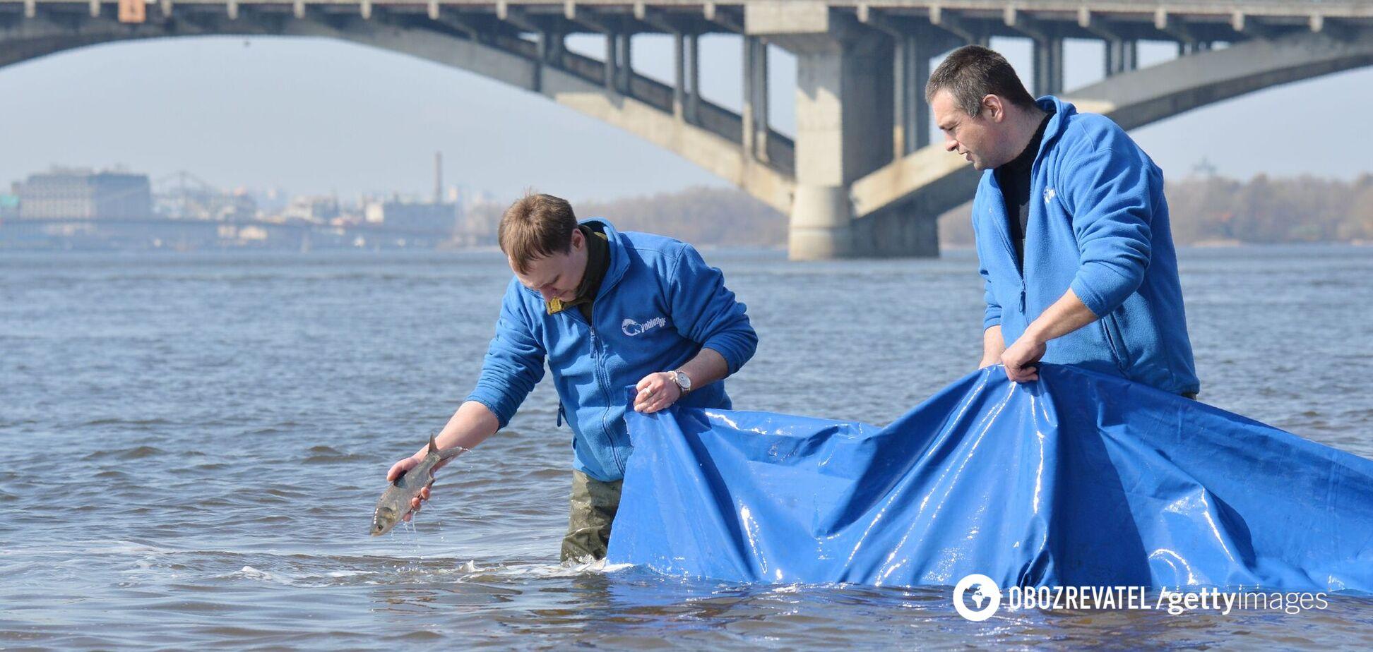 Українці можуть залишитися без питної води: Дніпро перетворюється в болото