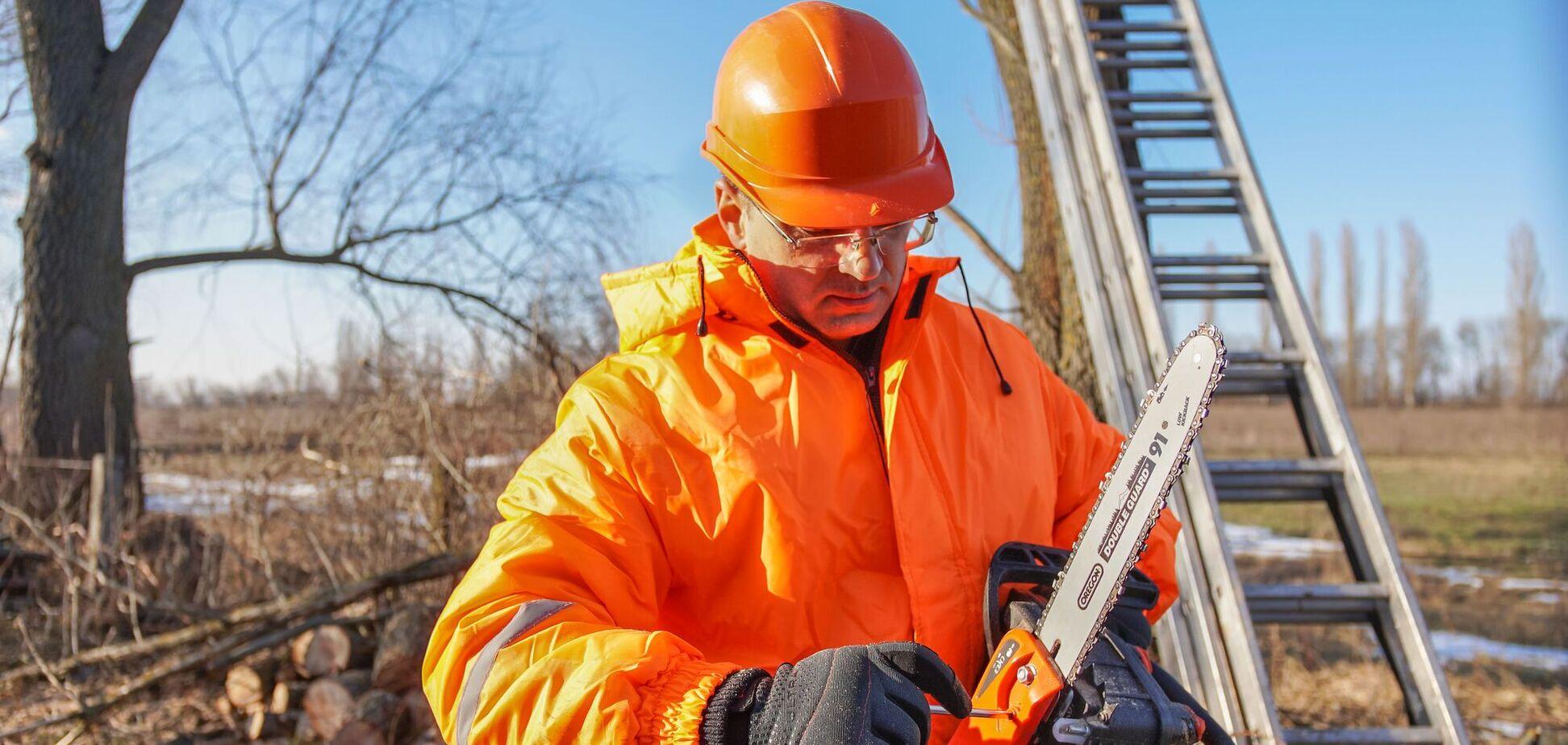 Весенние работы на даче: эксперты дали советы, какую технику выбрать