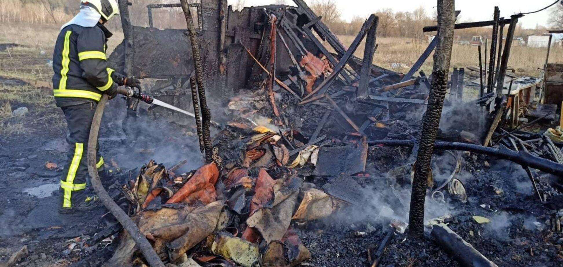 Київ охопили масштабні пожежі: названо причину