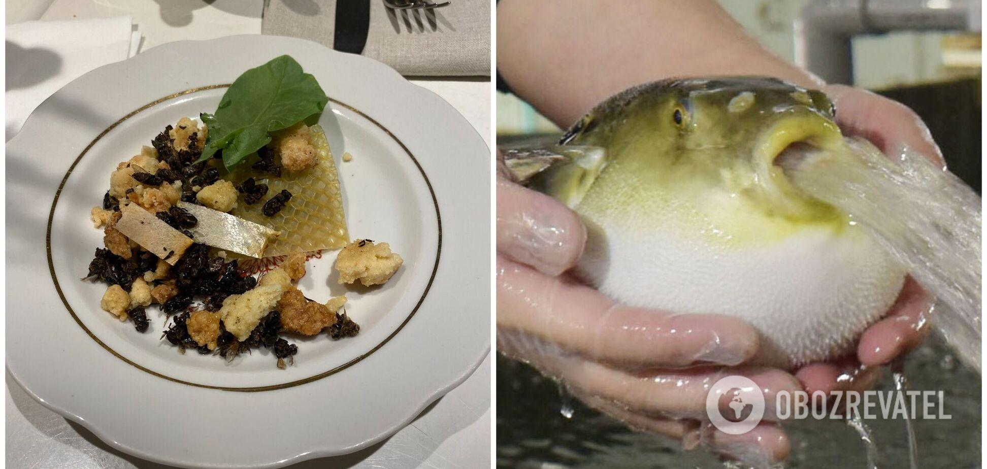 Млинці з крові та смажені бджоли: топ страв у світі, які ризикне скуштувати не кожен. Фото