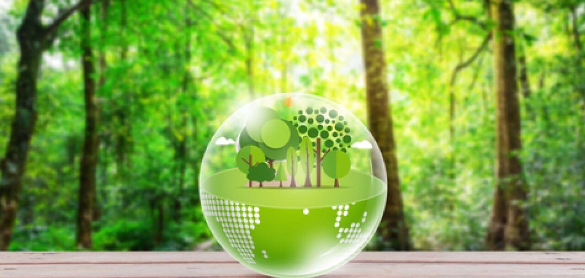 Змінюємо світ разом: НБУ впроваджує ініціативи у сфері 'зелених' фінансів