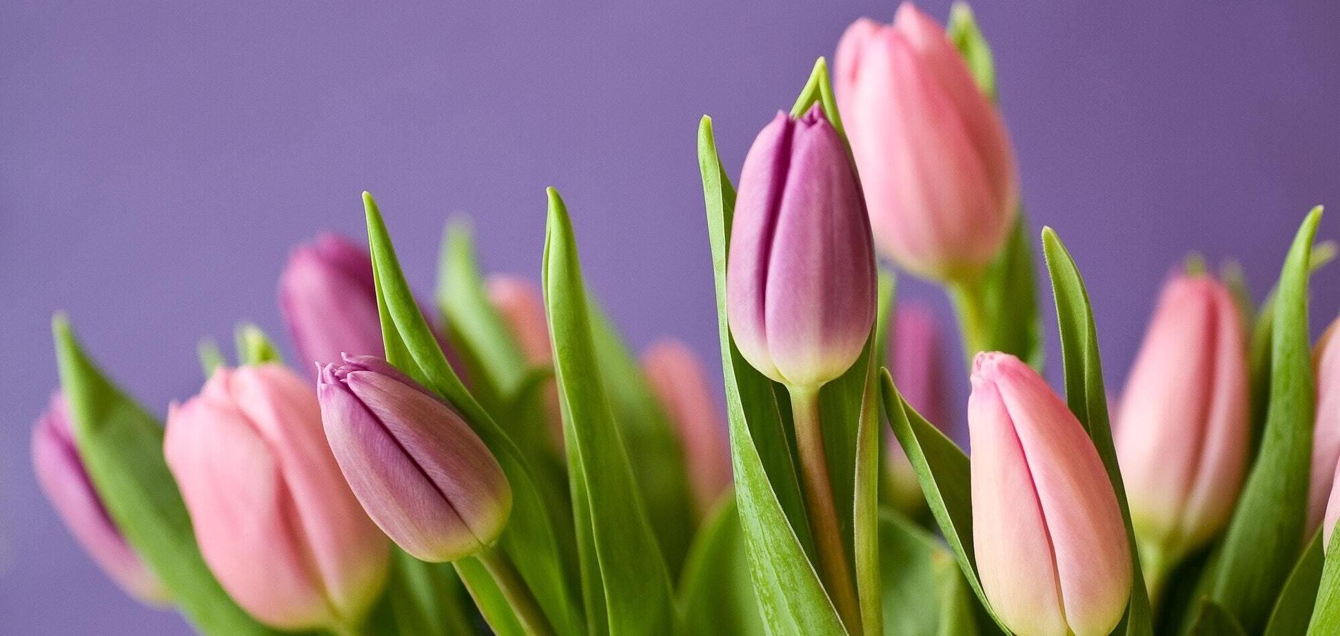 8 березня: що не можна робити, свята і прикмети