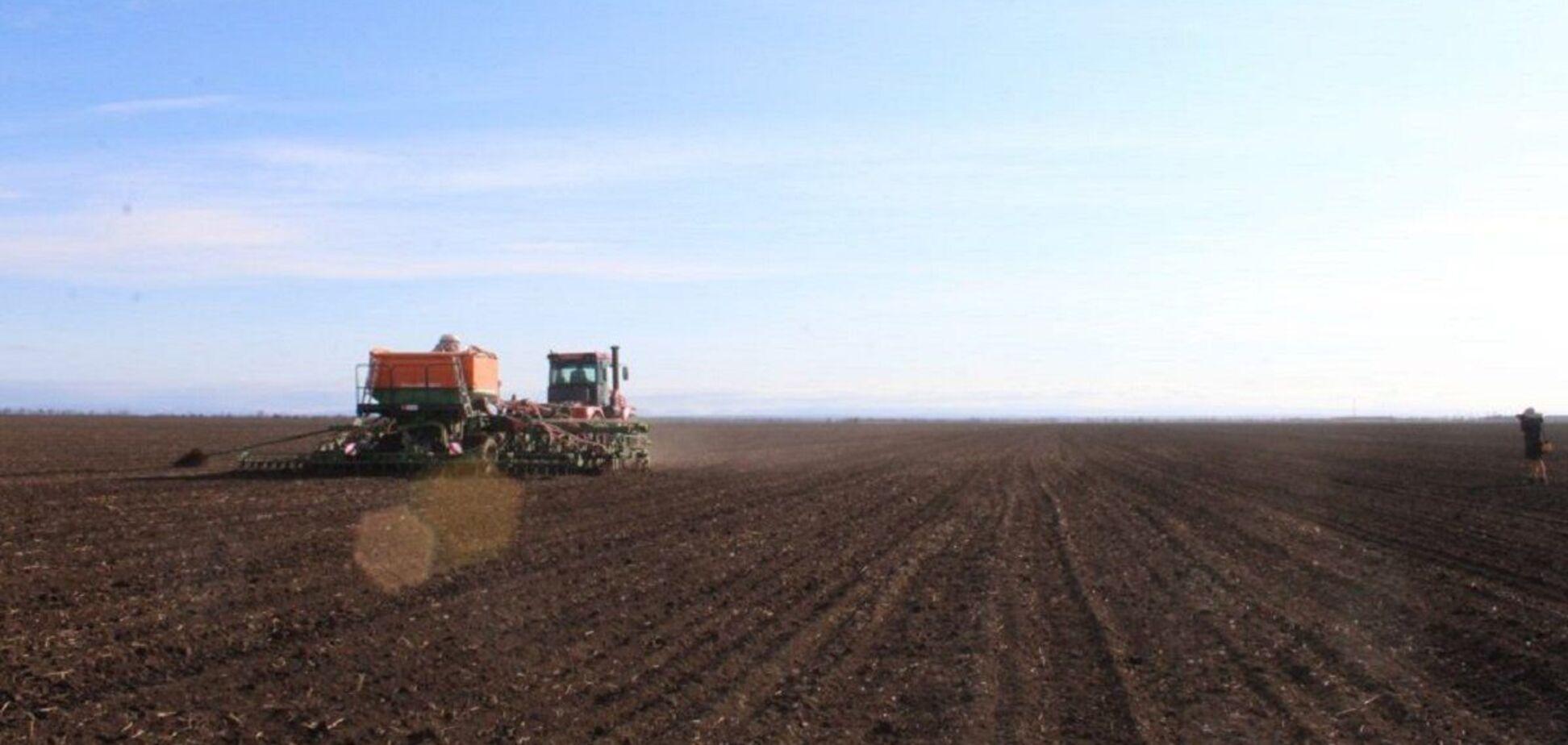 Обсяг тіньової оренди землі в Україні сягає 90 млрд грн – Мінагрополітики