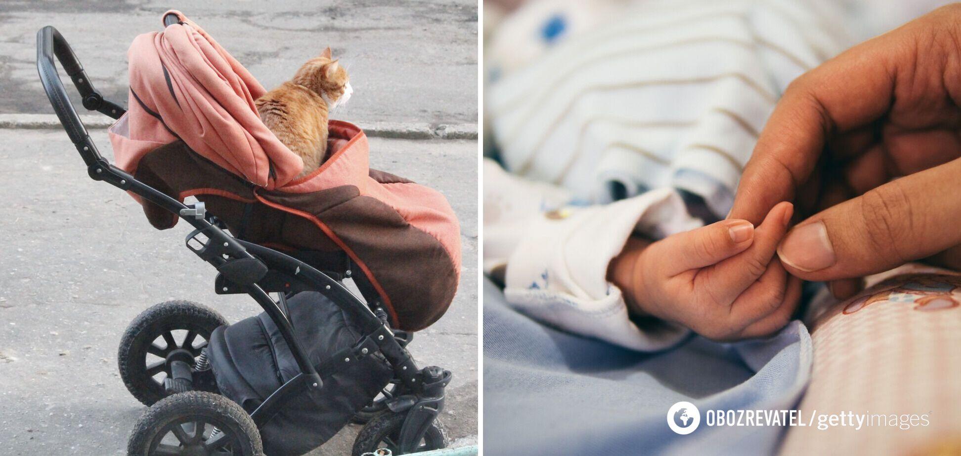 На Рівненщині кіт задушив 4-місячну дитину