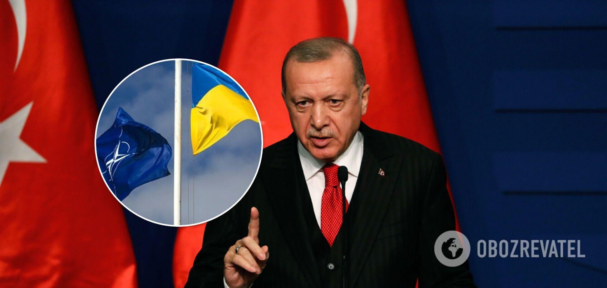 Ердоган підтримав надання Україні ПДЧ щодо НАТО