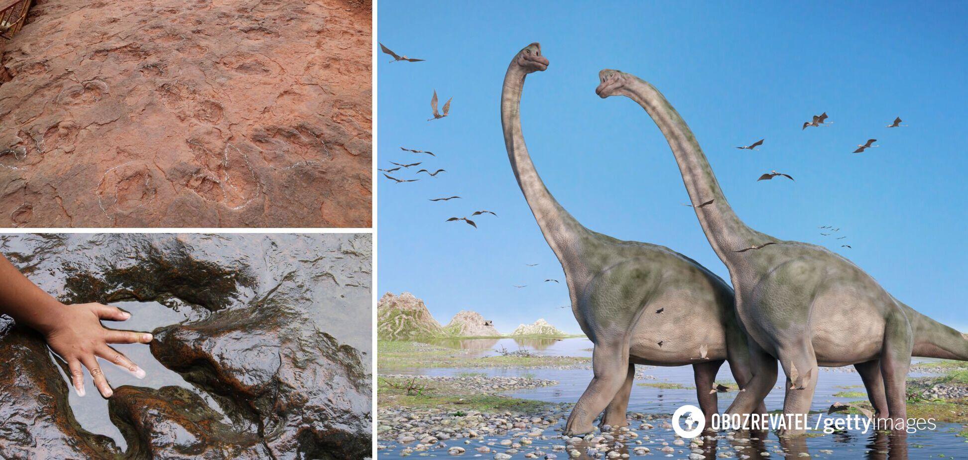 У Китаї виявили 'танцпол динозаврів'