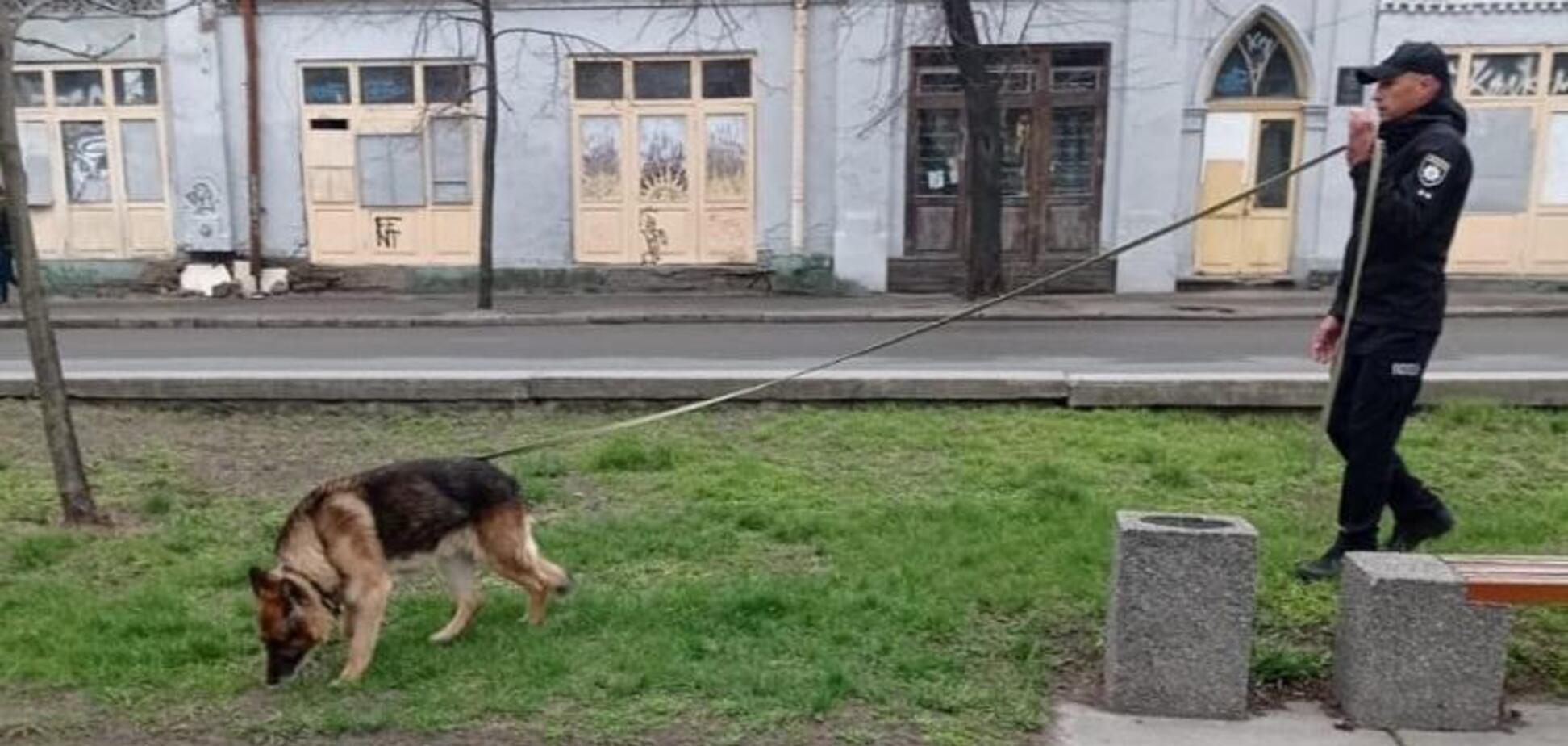 В Киеве служебная овчарка помогла полицейским задержать рецидивиста. Фото