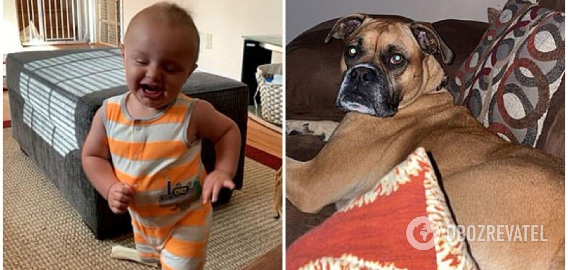 Малыш со смехом спародировал собаку и стал звездой сети. Видео