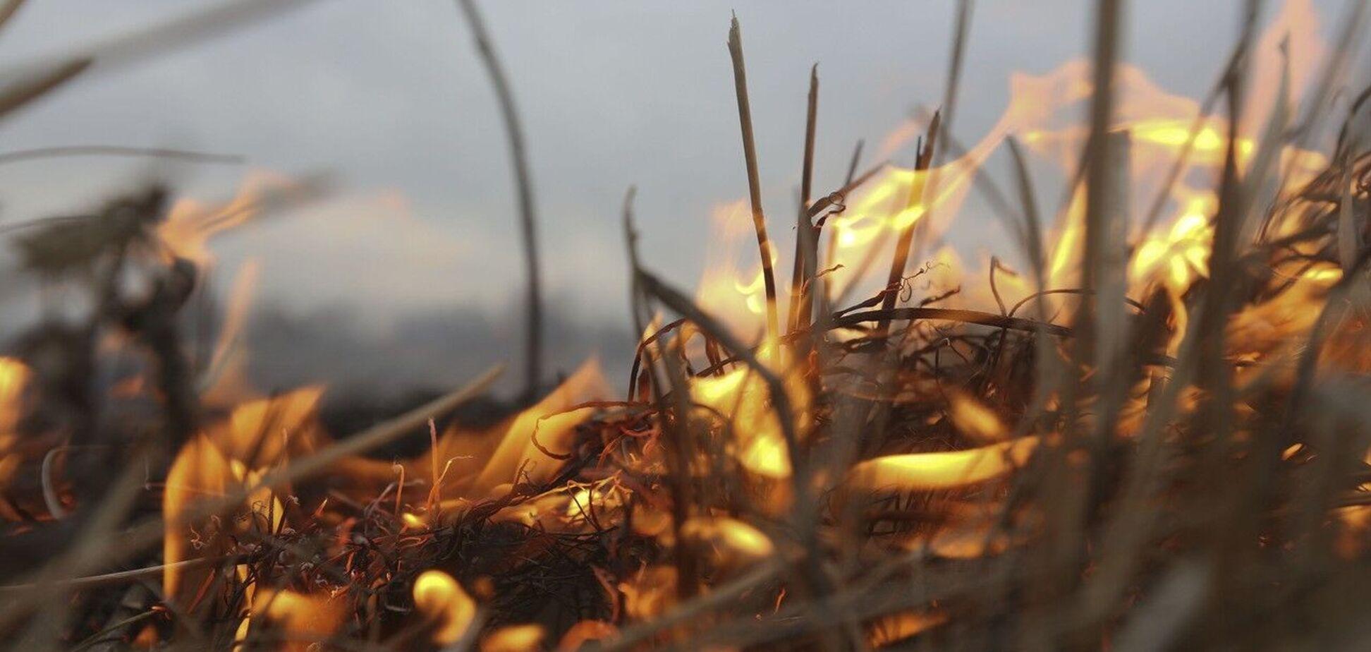 Взрыв произошел во время сжигания листвы