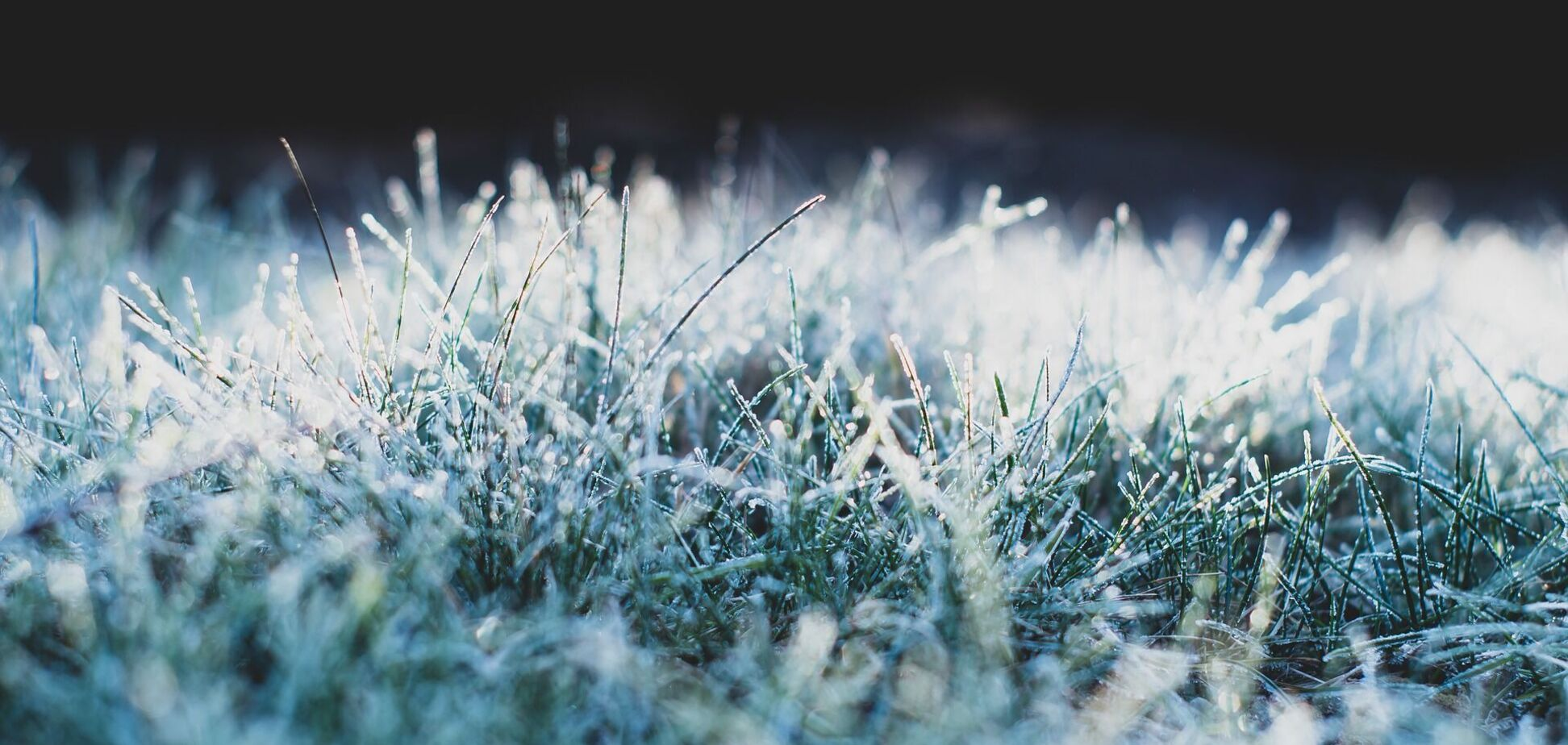 Українців попередили про заморозки в суботу. Карта погоди