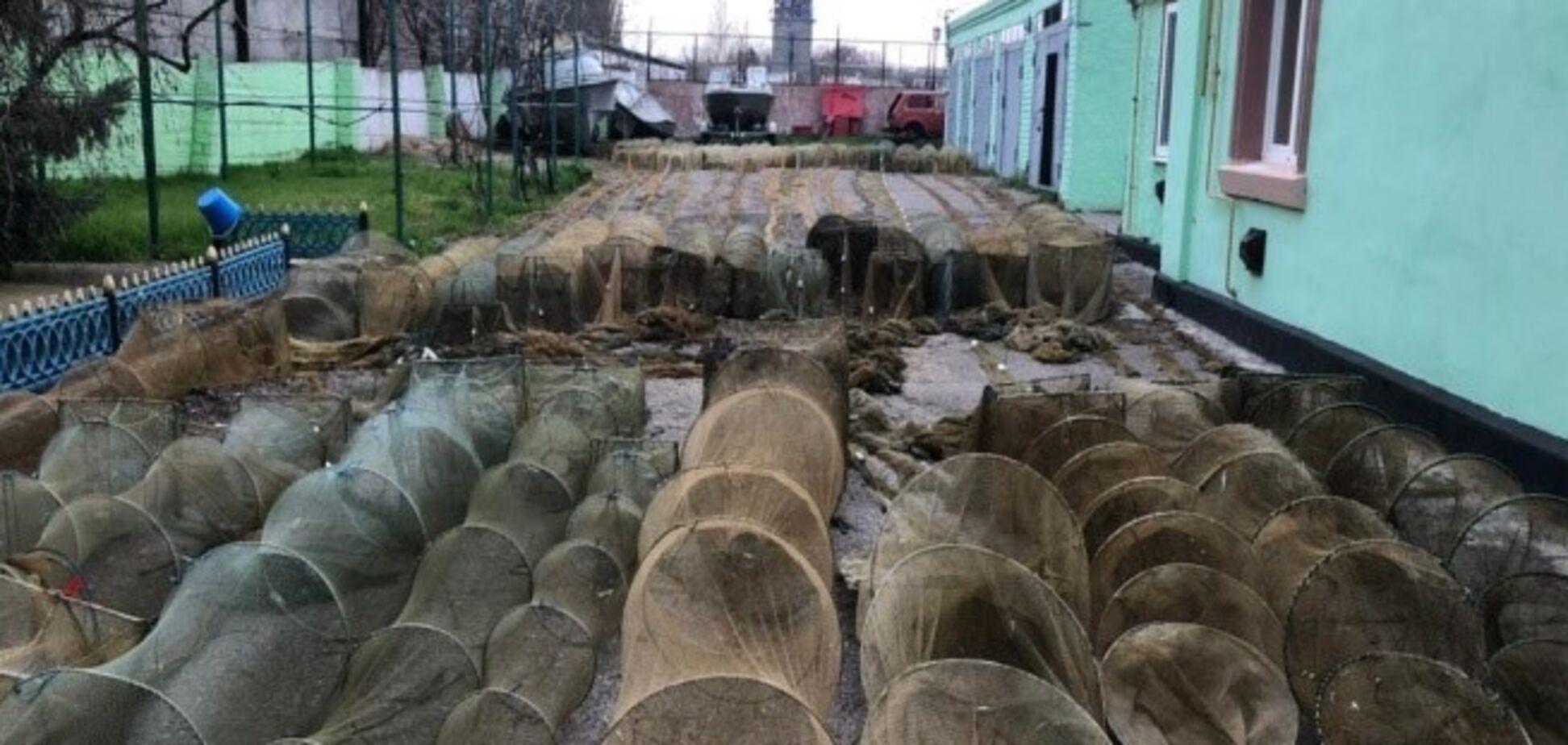 На Херсонщині браконьєри виловили риби та креветок на понад 2 млн грн