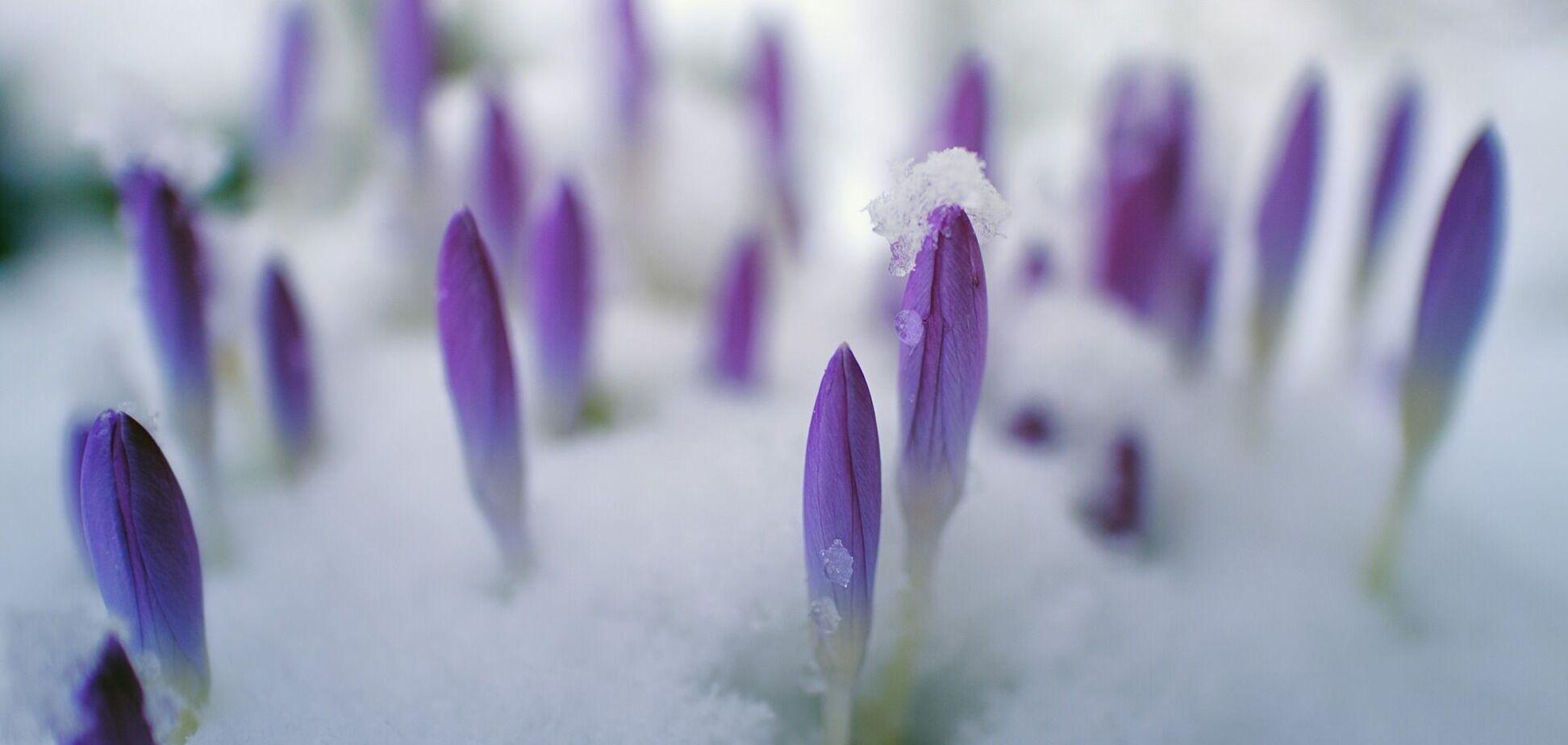 3 апреля: праздники, приметы на Кирилла Катаника и именинники