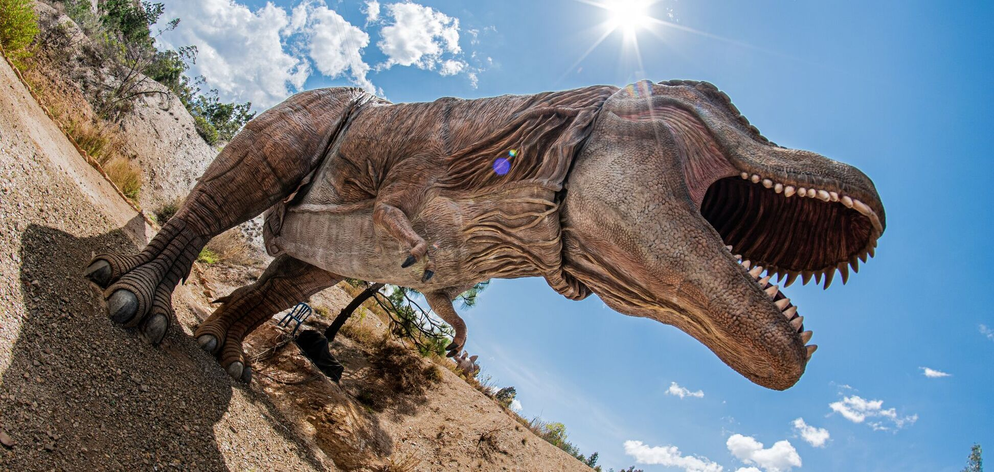 Тиранозавр ходил со скоростью человека – ученые