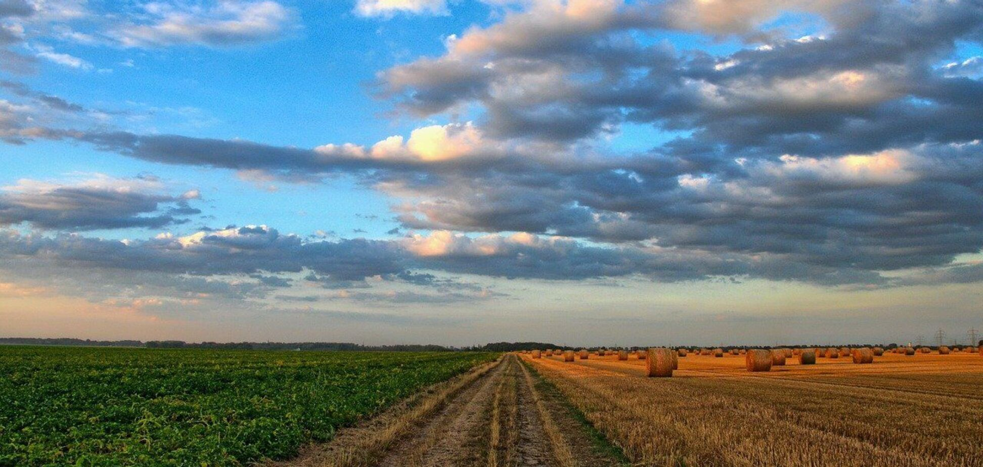 Бесплатные 2 га земли для украинцев не отменят, – Кабмин
