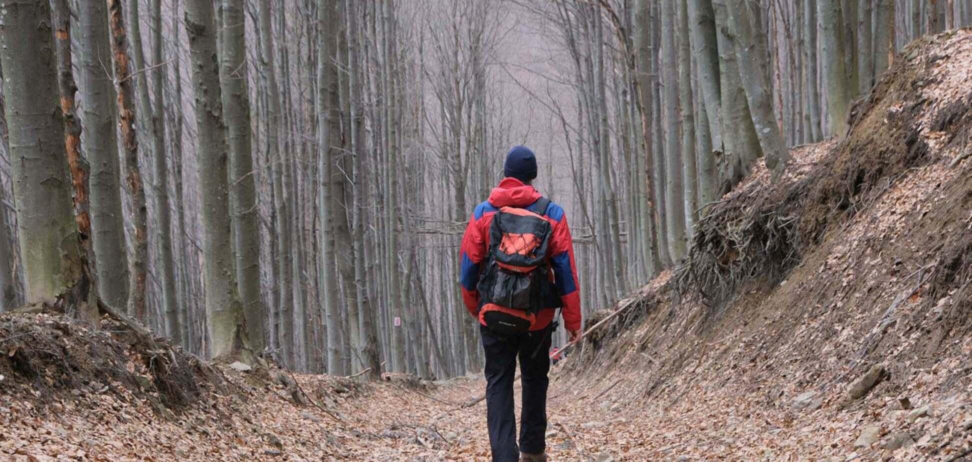У Карпатах продовжили пошуки зниклого ще в лютому туриста. Фото
