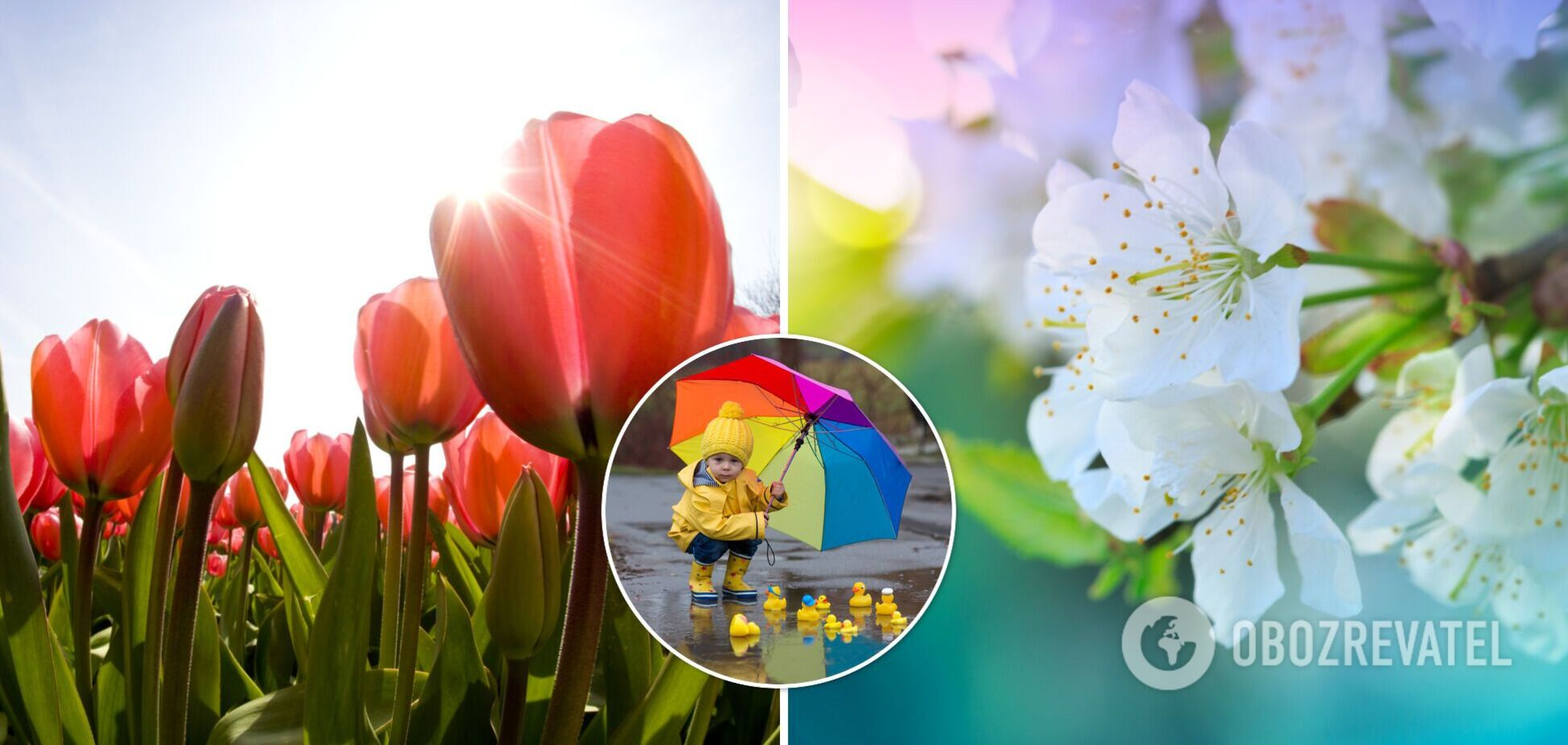 Когда в Украину придет настоящее лето: синоптик назвал дату