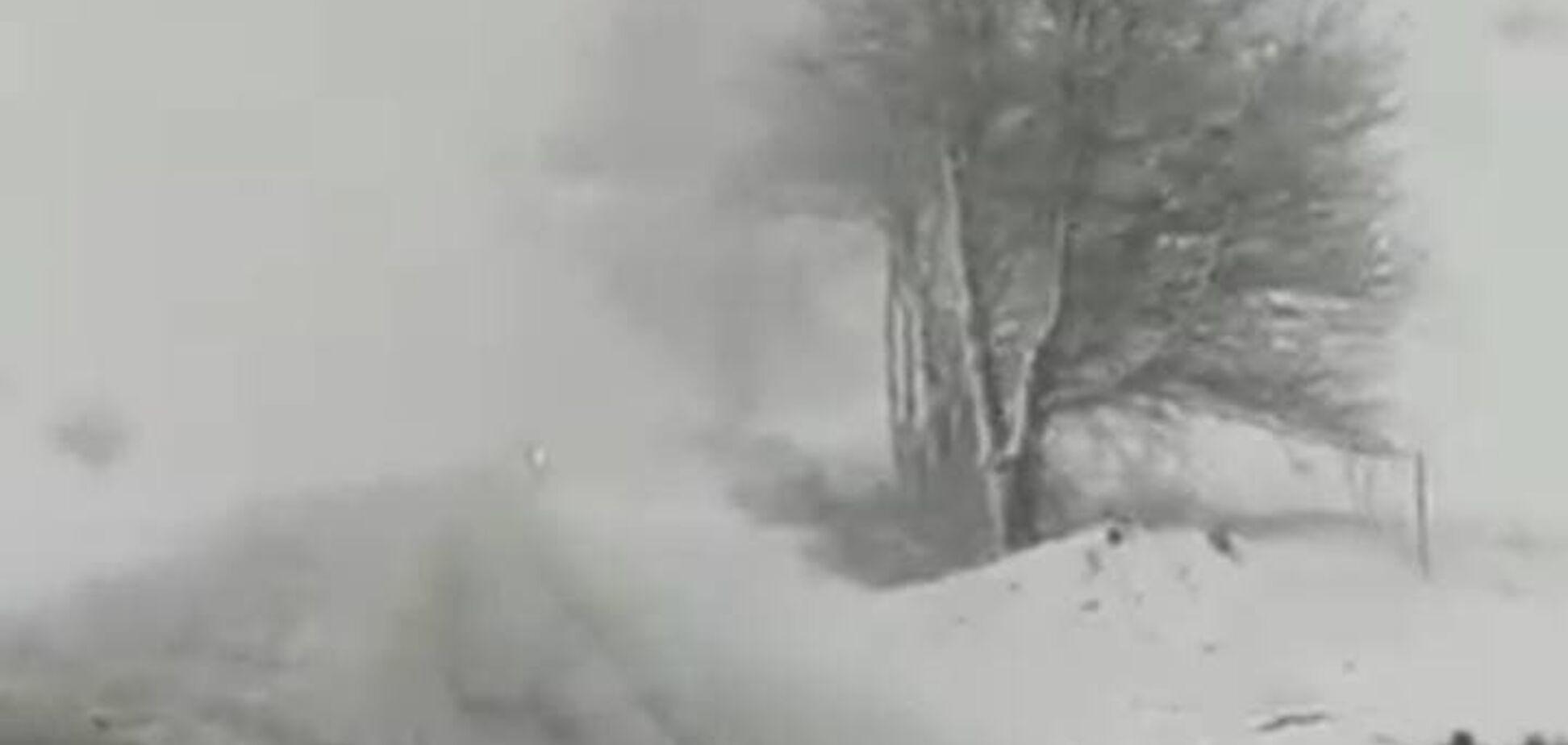 У кінці квітня Київщину накрили потужні снігопади. Фото