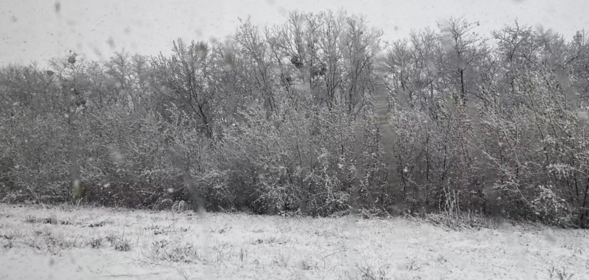В Украине выпал снег