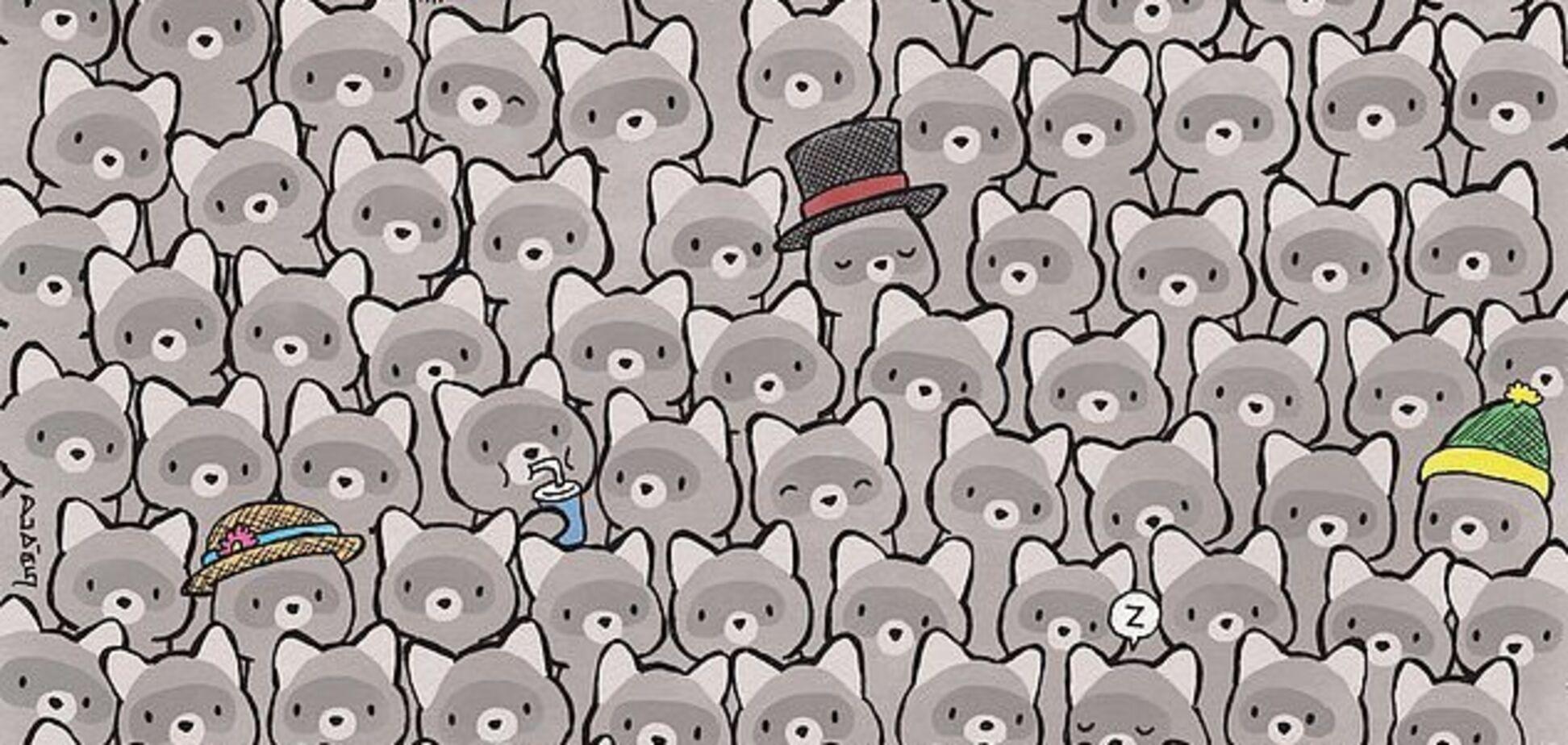 Найди кота! Новая головоломка озадачила сеть