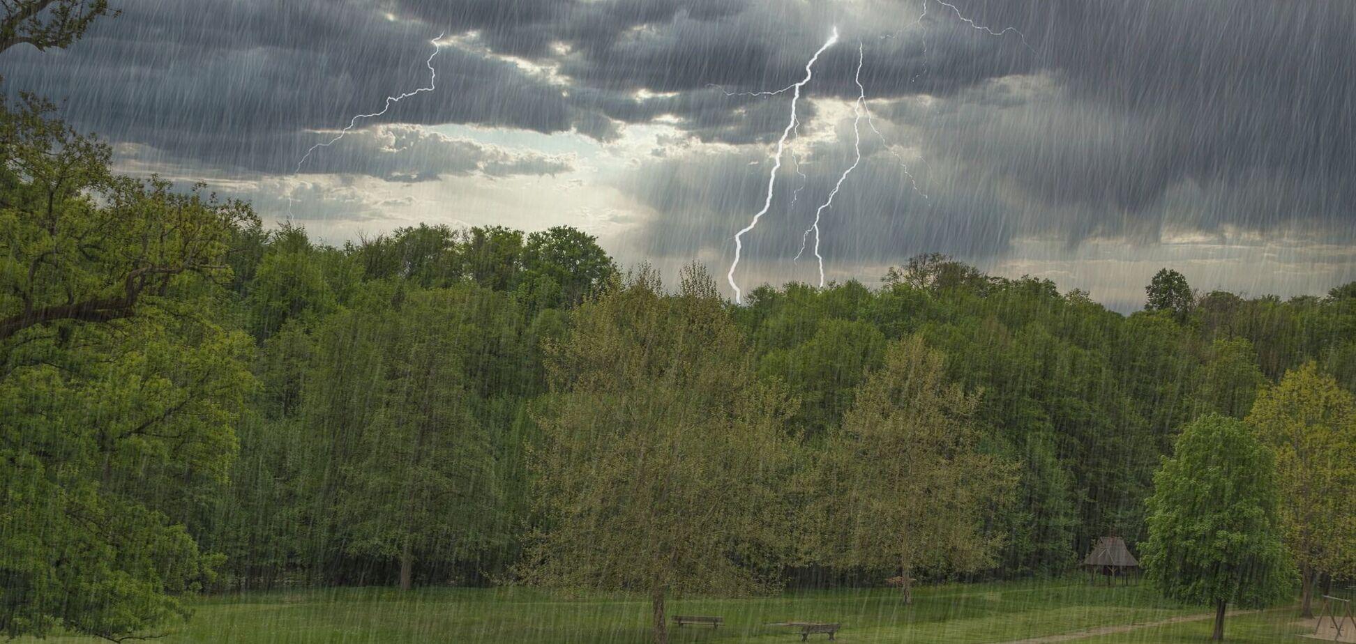 Дожди с грозами распространятся почти на всю Украину: какой будет погода 1 мая