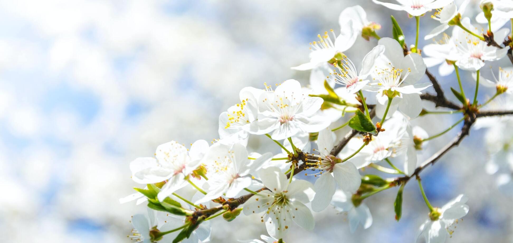 3 мая: праздники, приметы и именинники