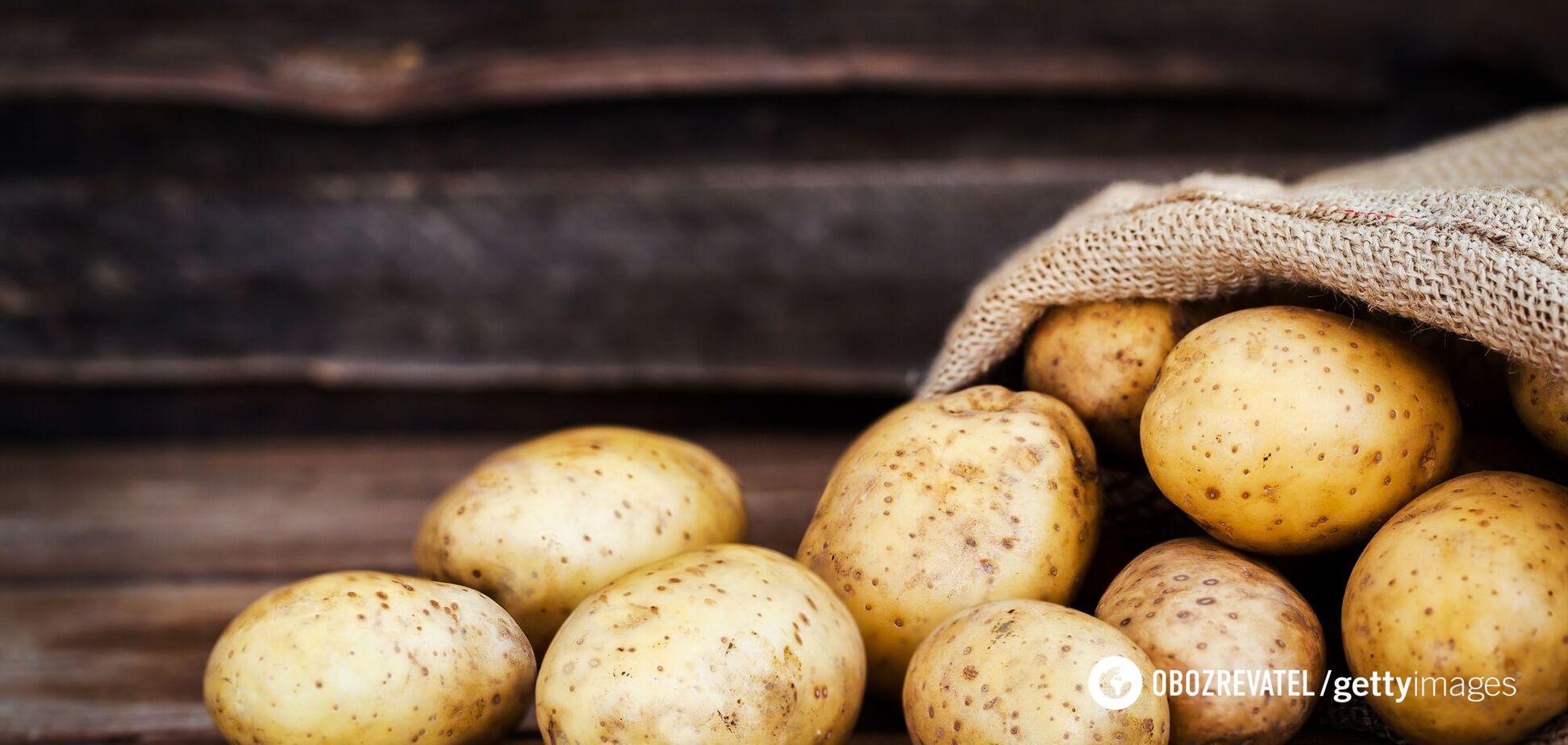 Коли картопля стає небезпечною