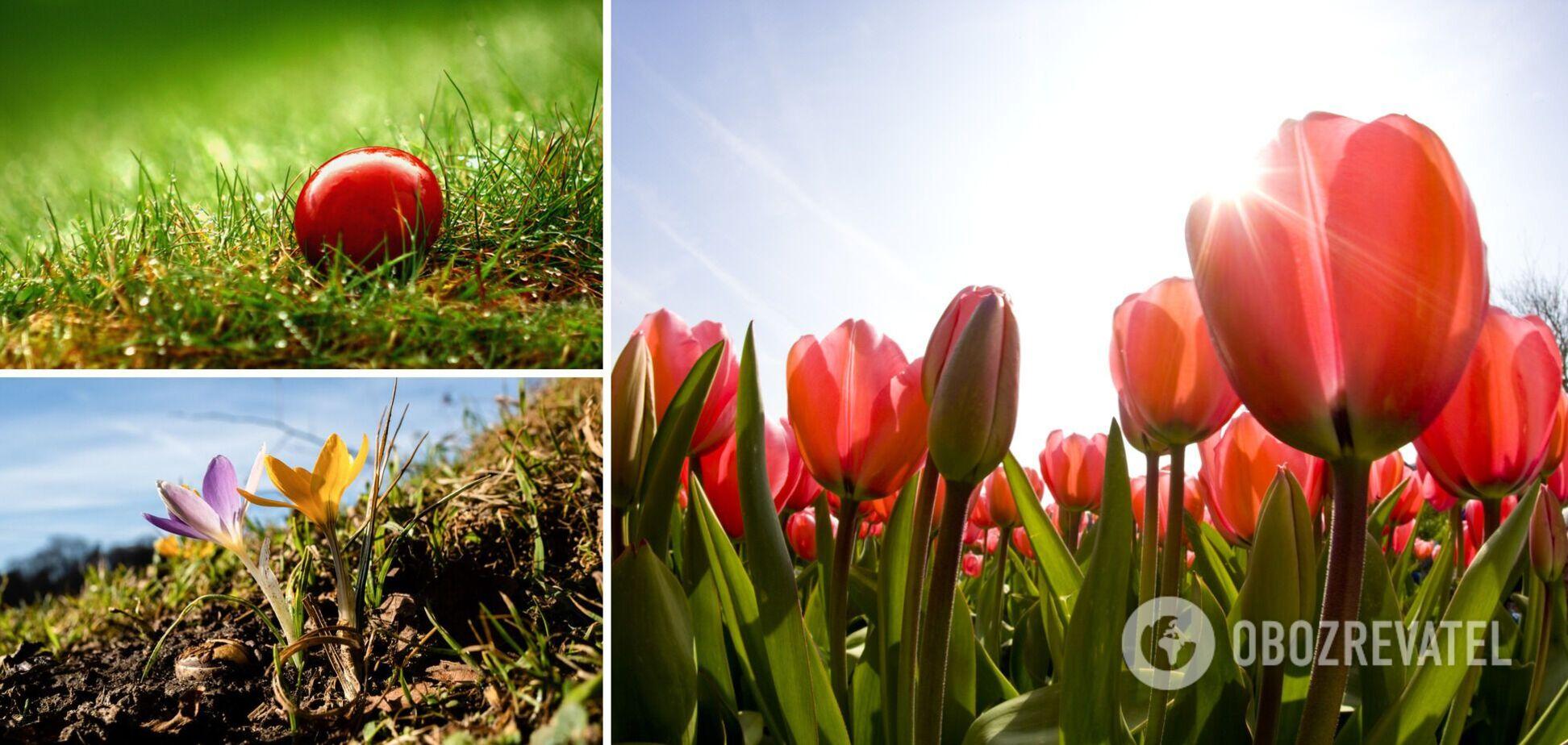 Тепло вернется, но весна будет нестабильной: синоптики уточнили погоду до Пасхи и майских праздников