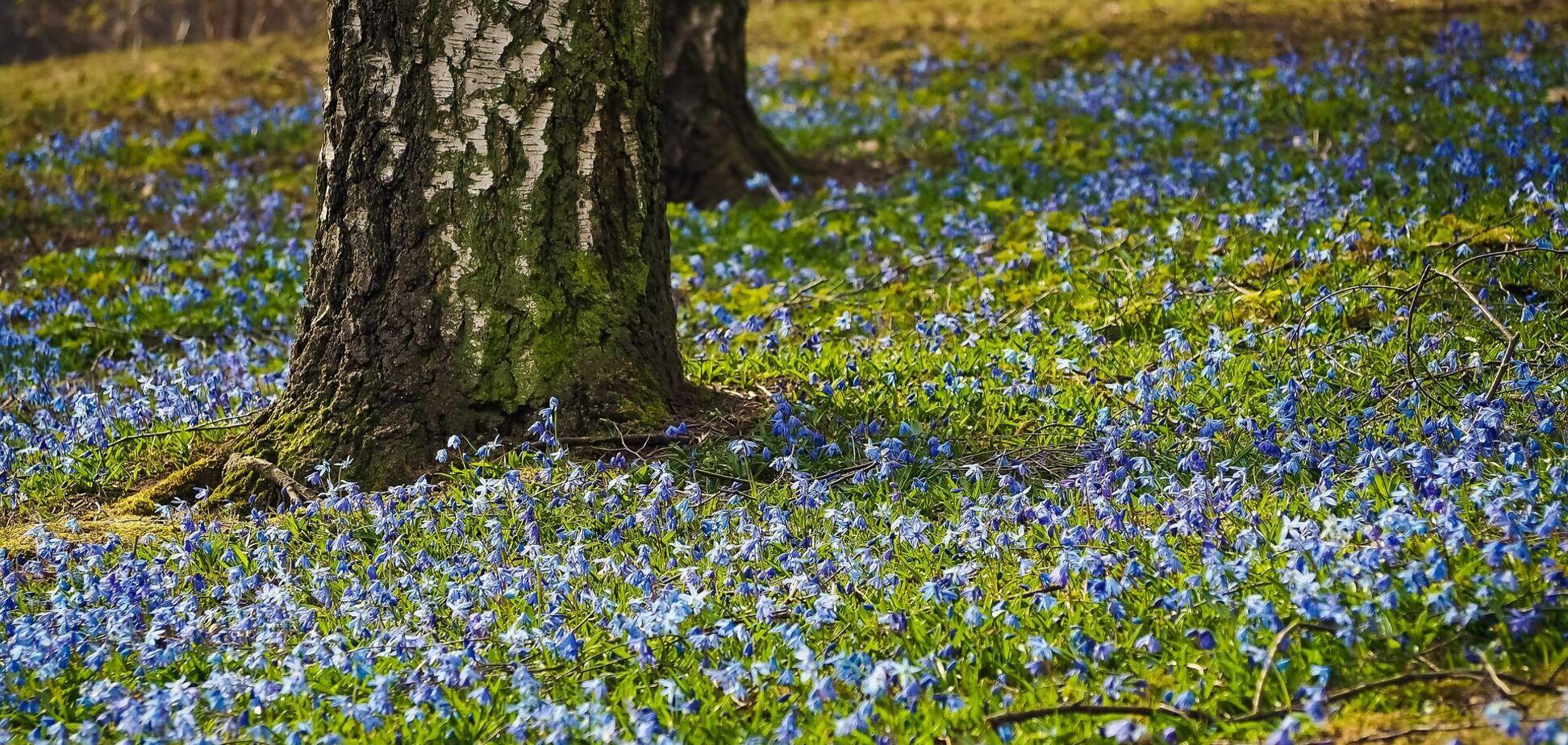 11 квітня: свята і прикмети на Березань