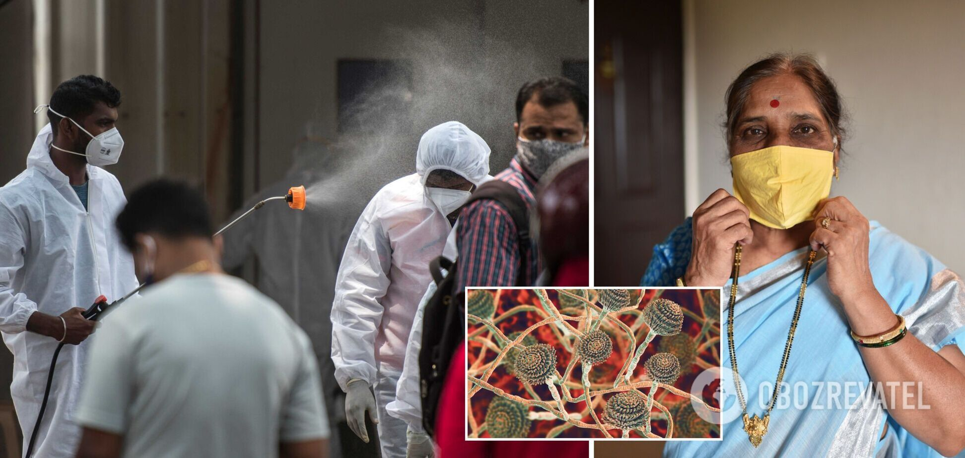 В Індії в перехворілих на COVID-19 лікарі виявили рідкісний 'чорний грибок'